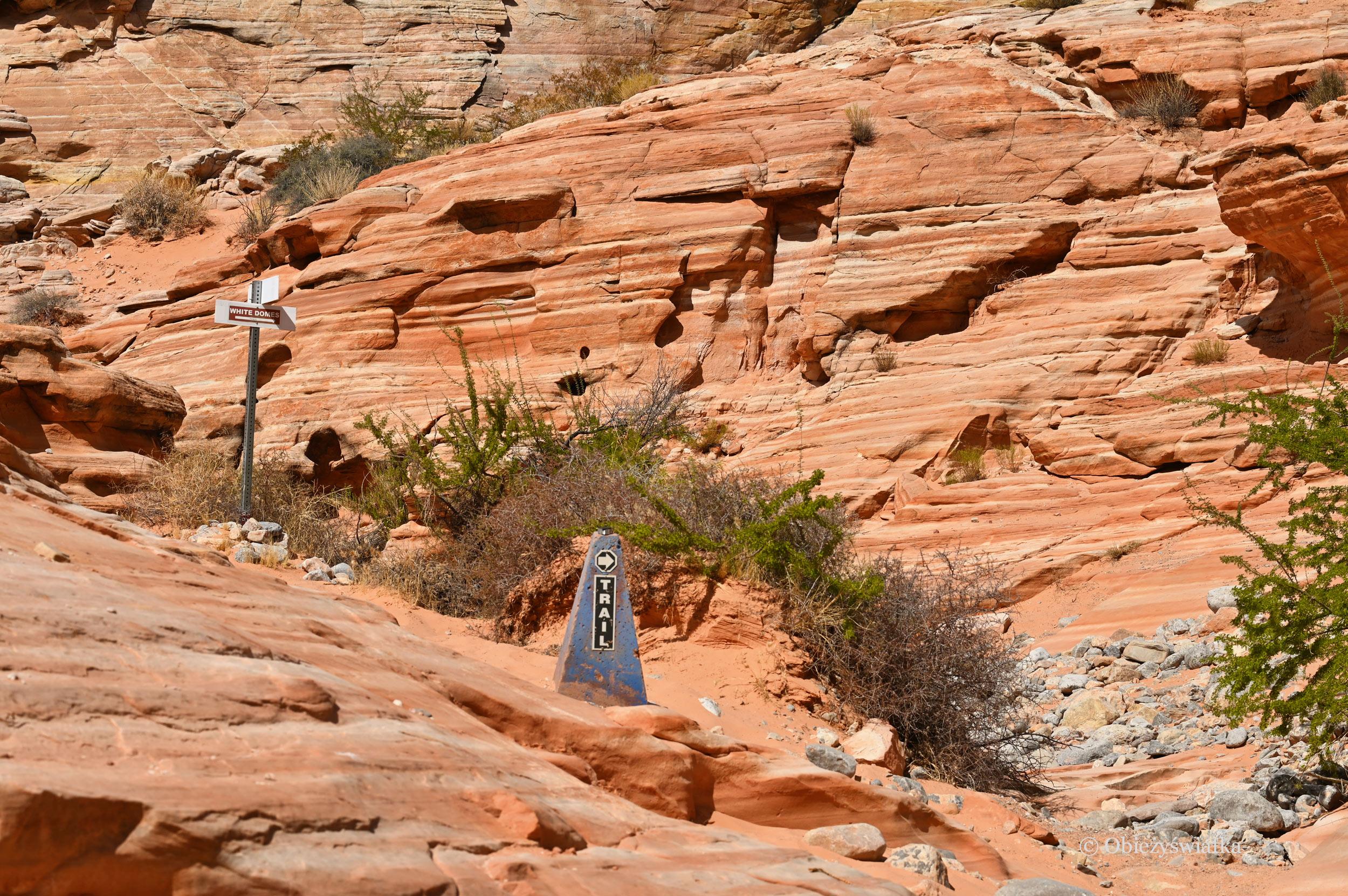 Jeden ze szlaków w Dolinie Ognia, Nevada