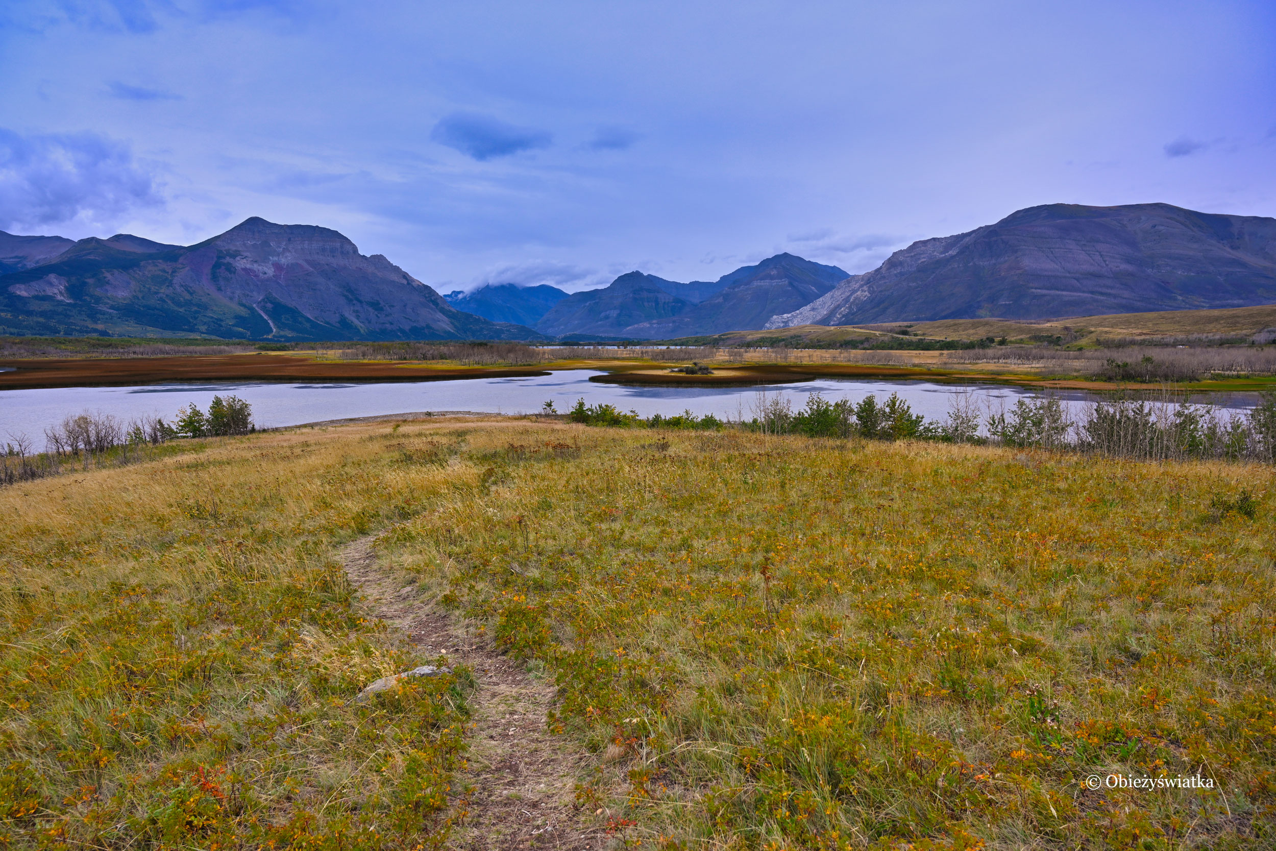 Mokradła wokół jeziora Maskinonge, Kanada