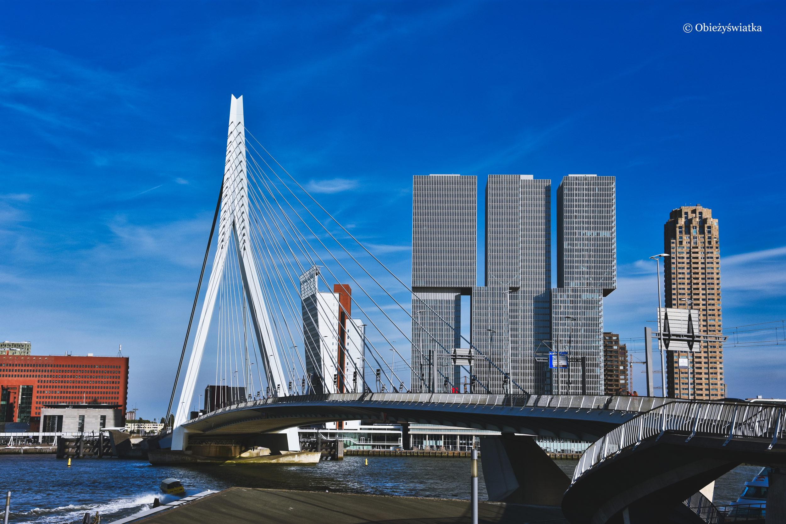 Most Erasmusa, De Rotterdam i Toren op Zuid, Rotterdam