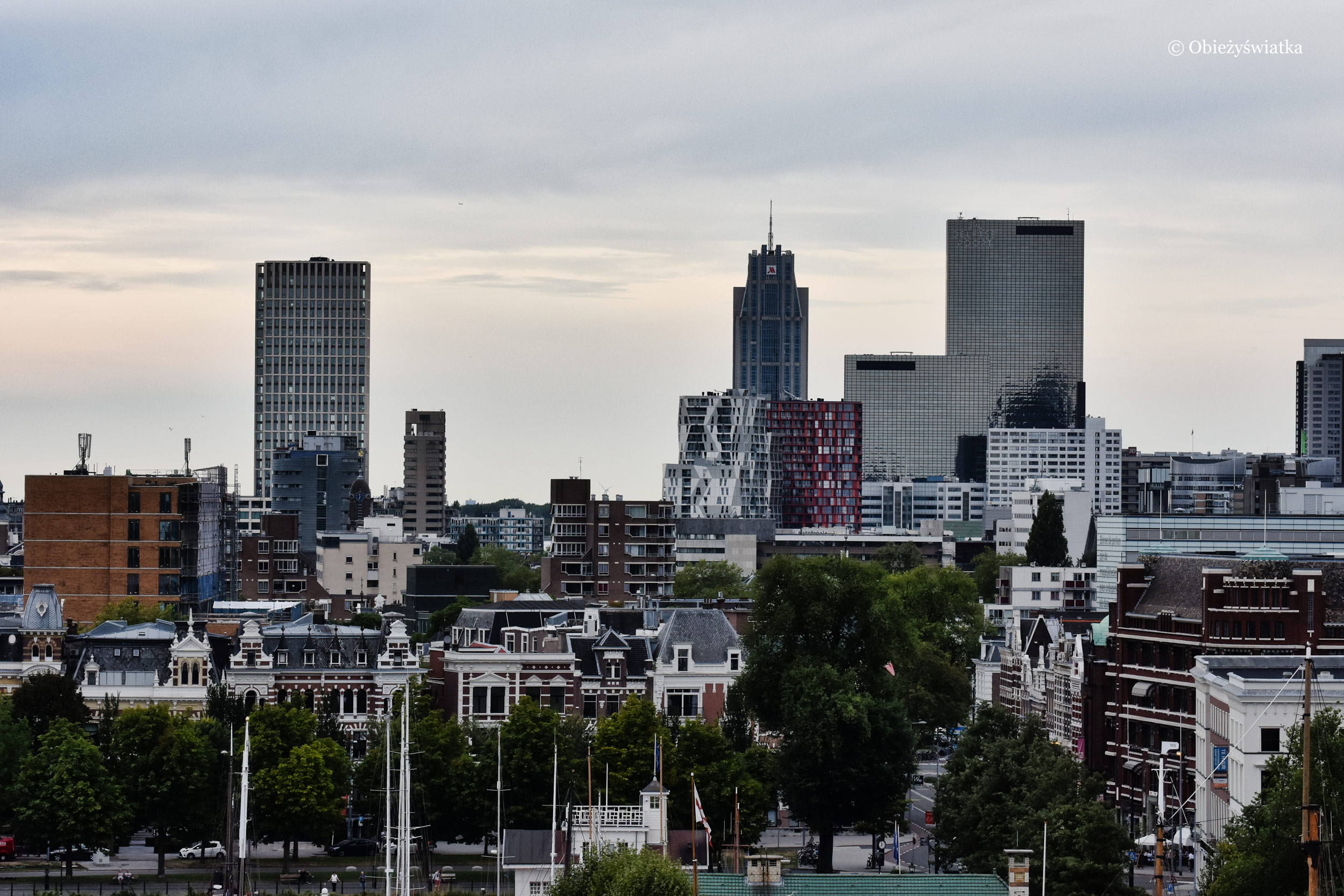 Rotterdam, widok z portu