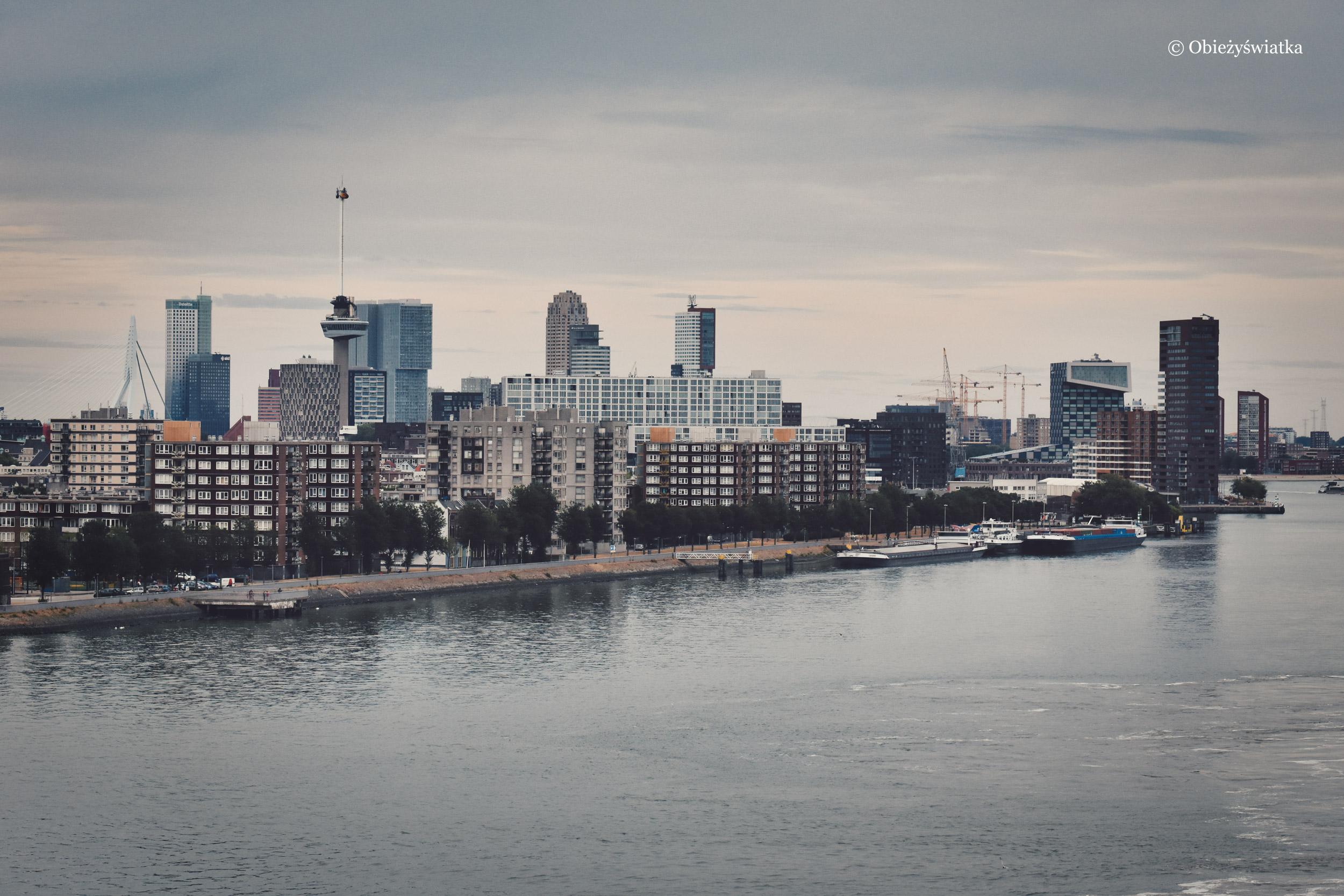Skyline Rotterdamu
