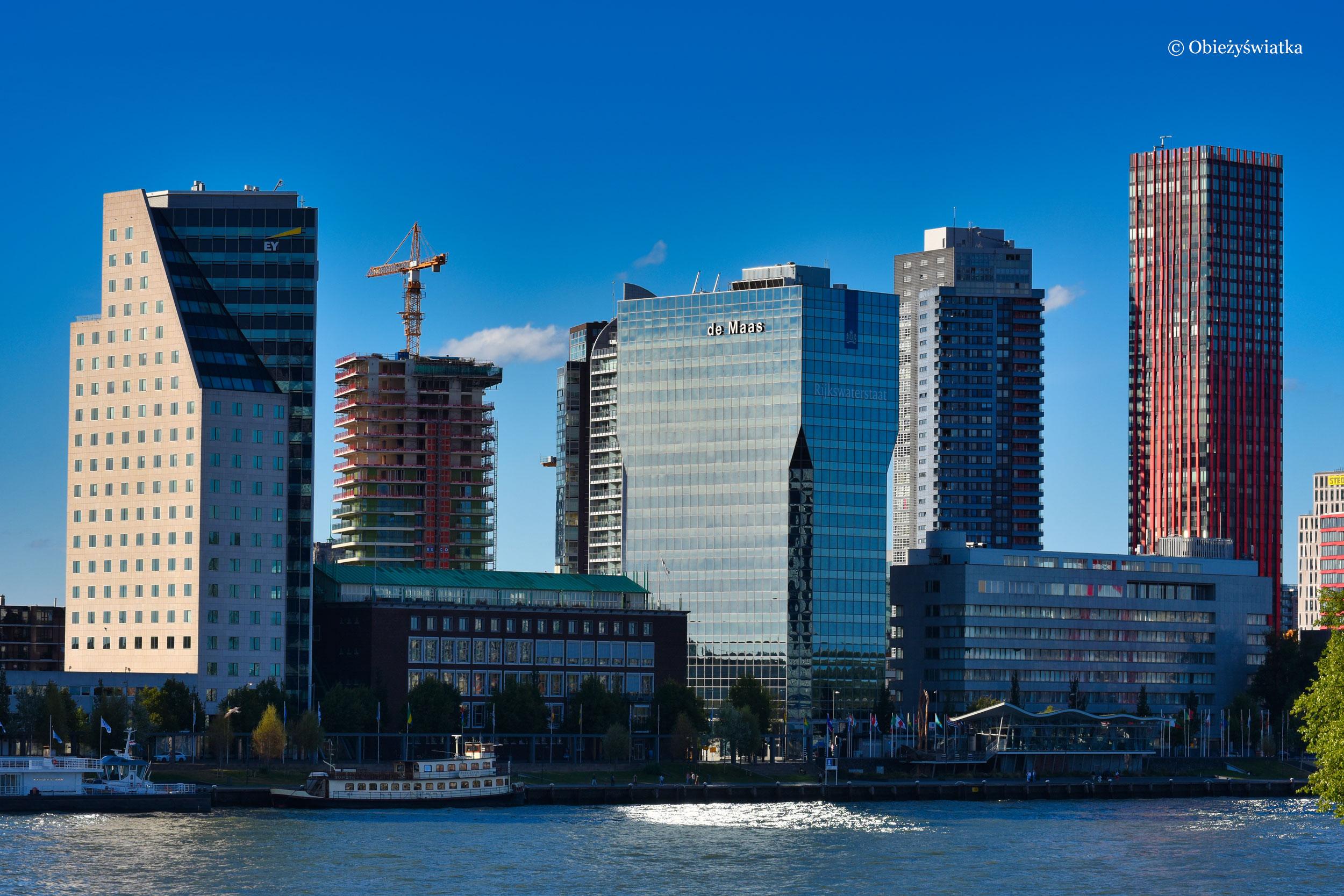 Miasto wieżowców, Rotterdam