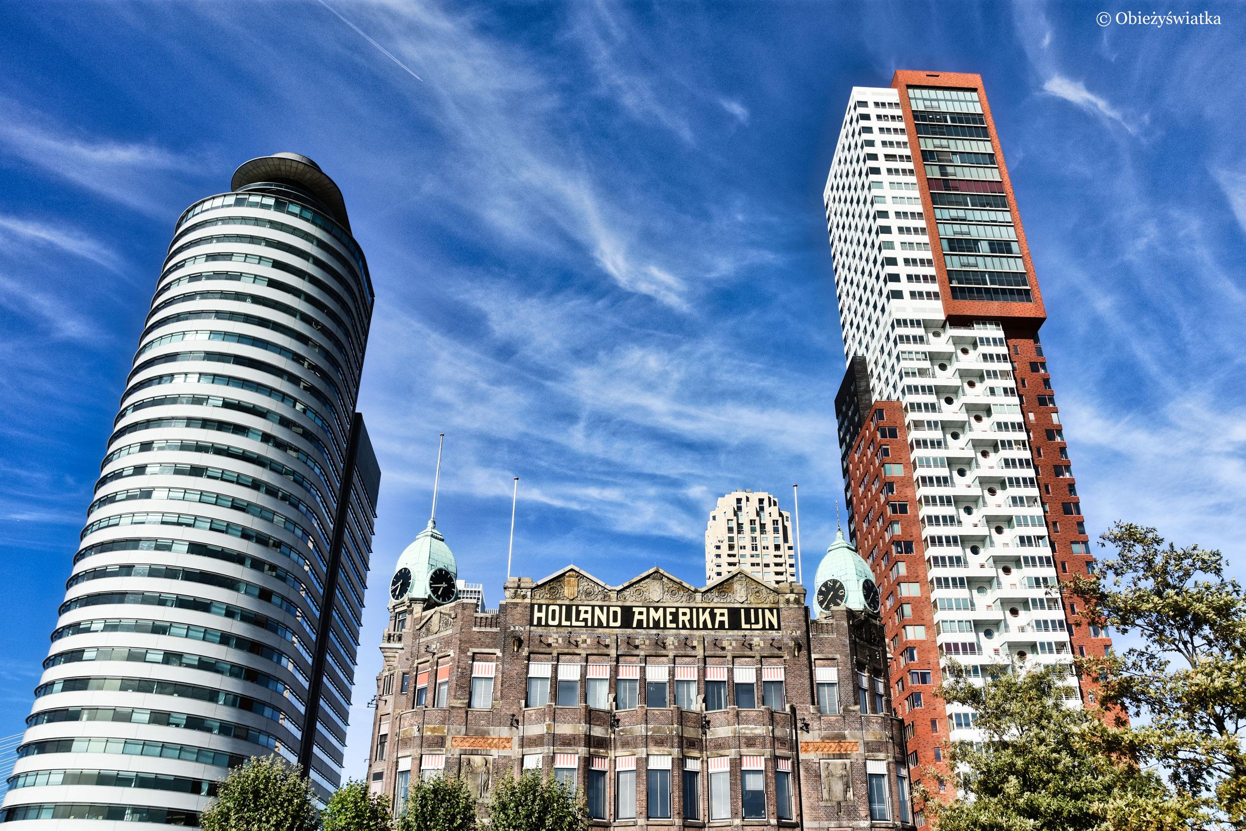 World Port Center, Holland Amerika Lijn i Montevideo Tower, Rotterdam