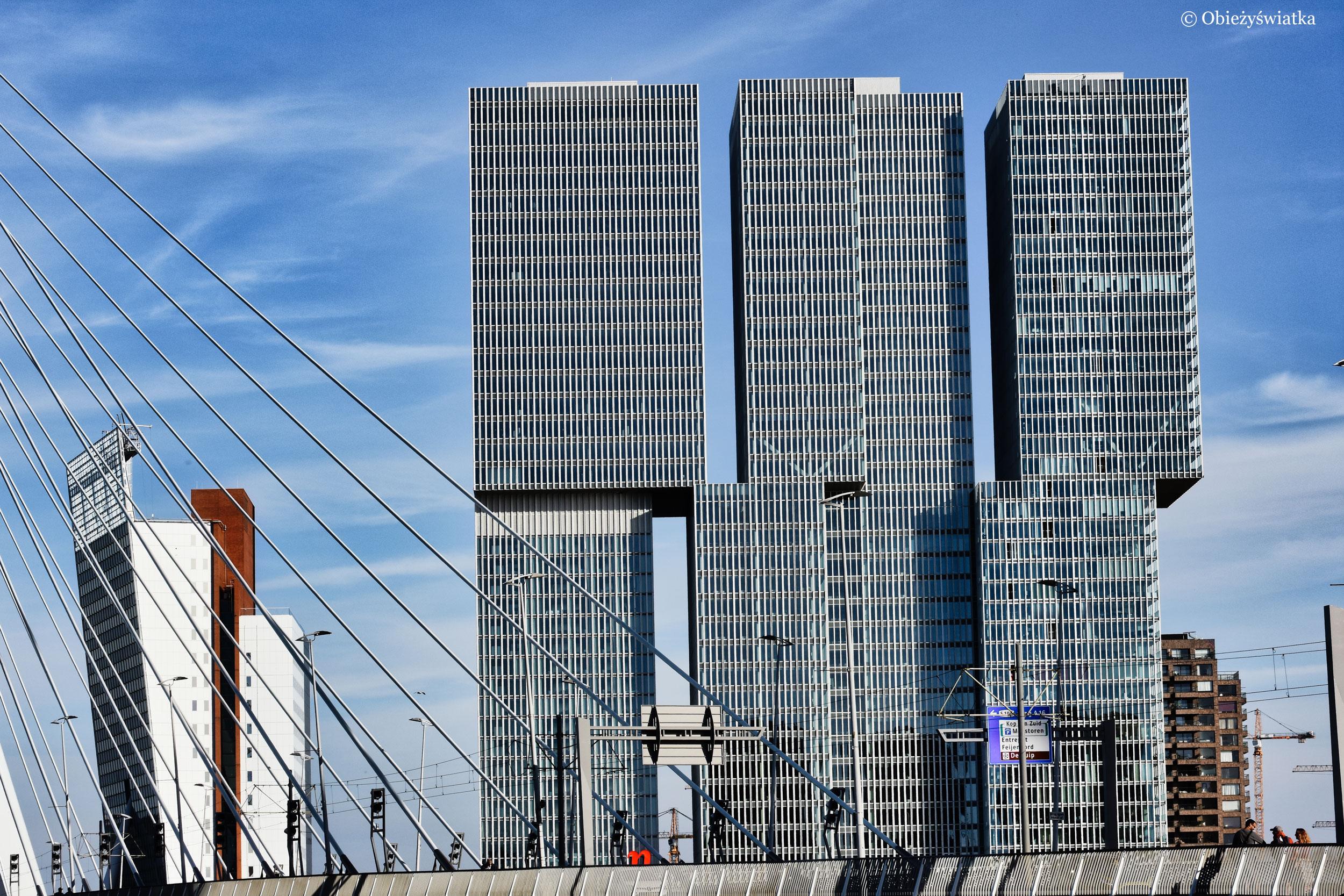 Budowle De Rotterdam i Toren op Zuid, Rotterdam