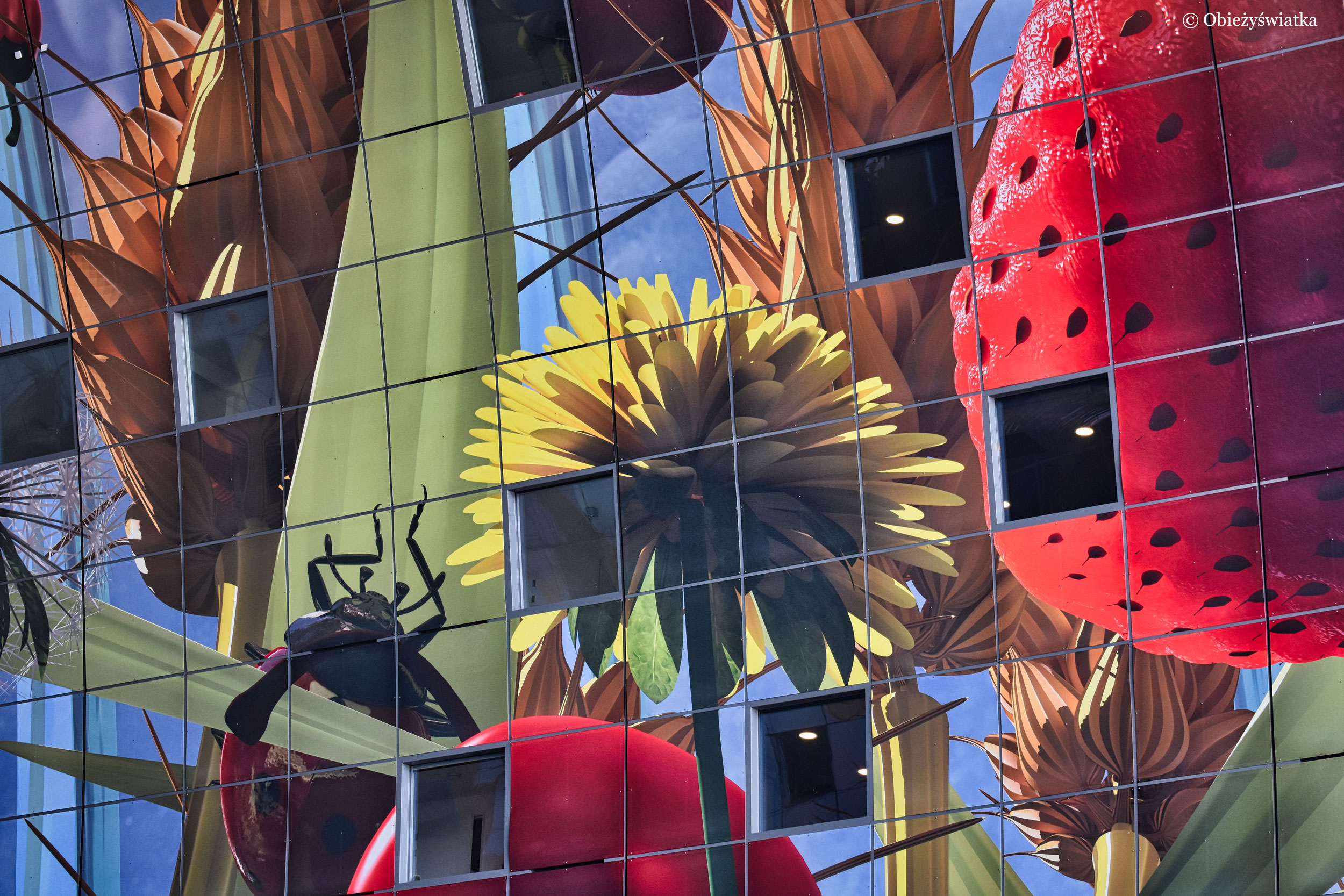 Piękne malowidła w Hali Targowej w Rotterdamie
