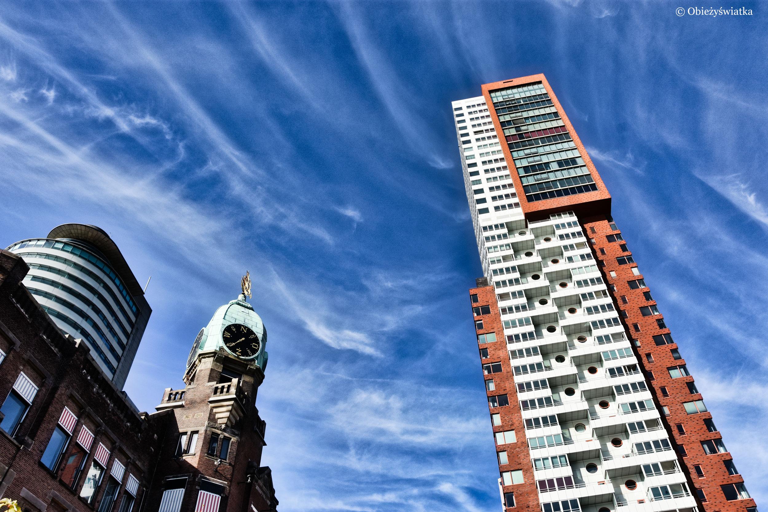 Holland Amerika Lijn i Montevideo Tower, Rotterdam