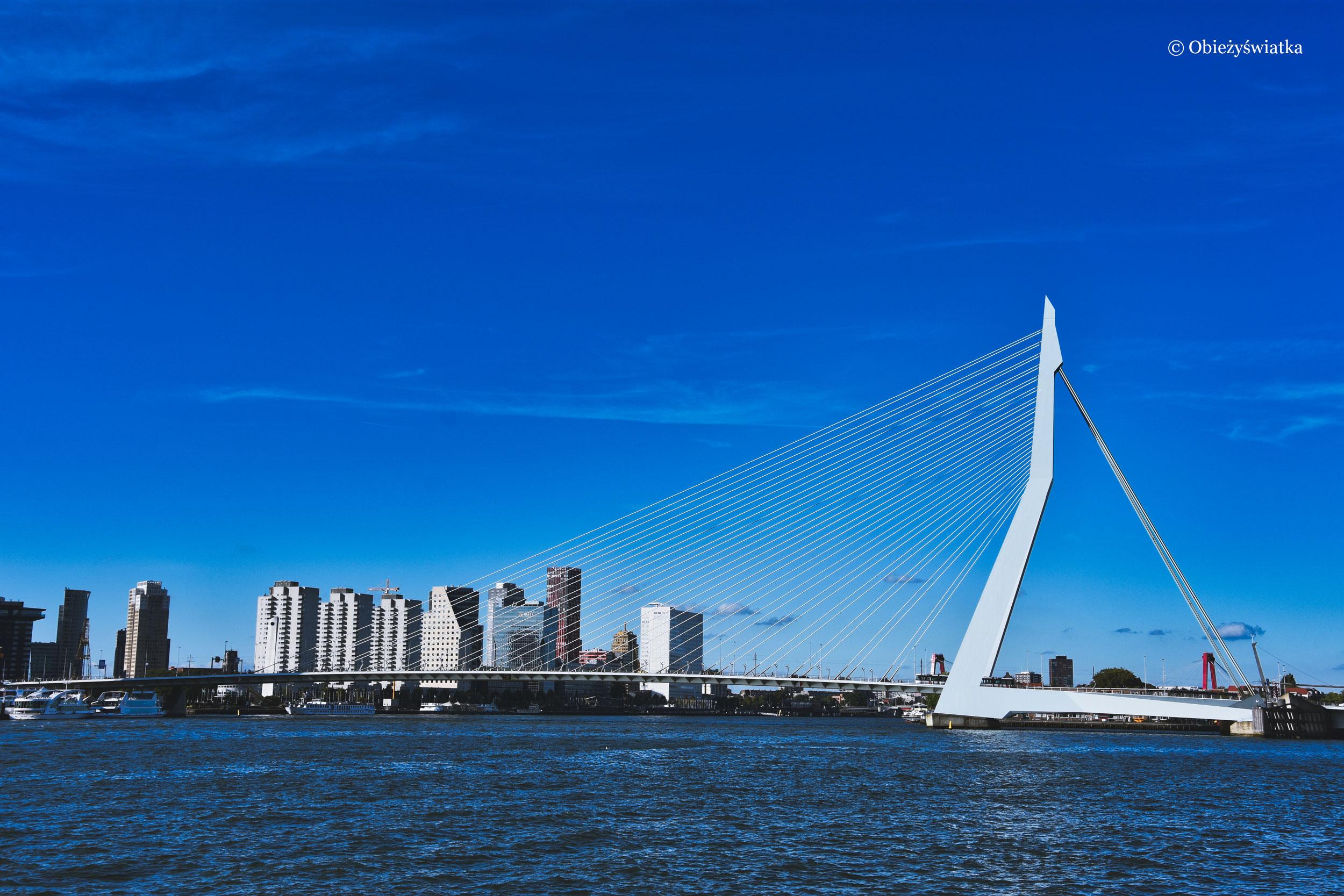 Most Erasmusa w Rotterdamie