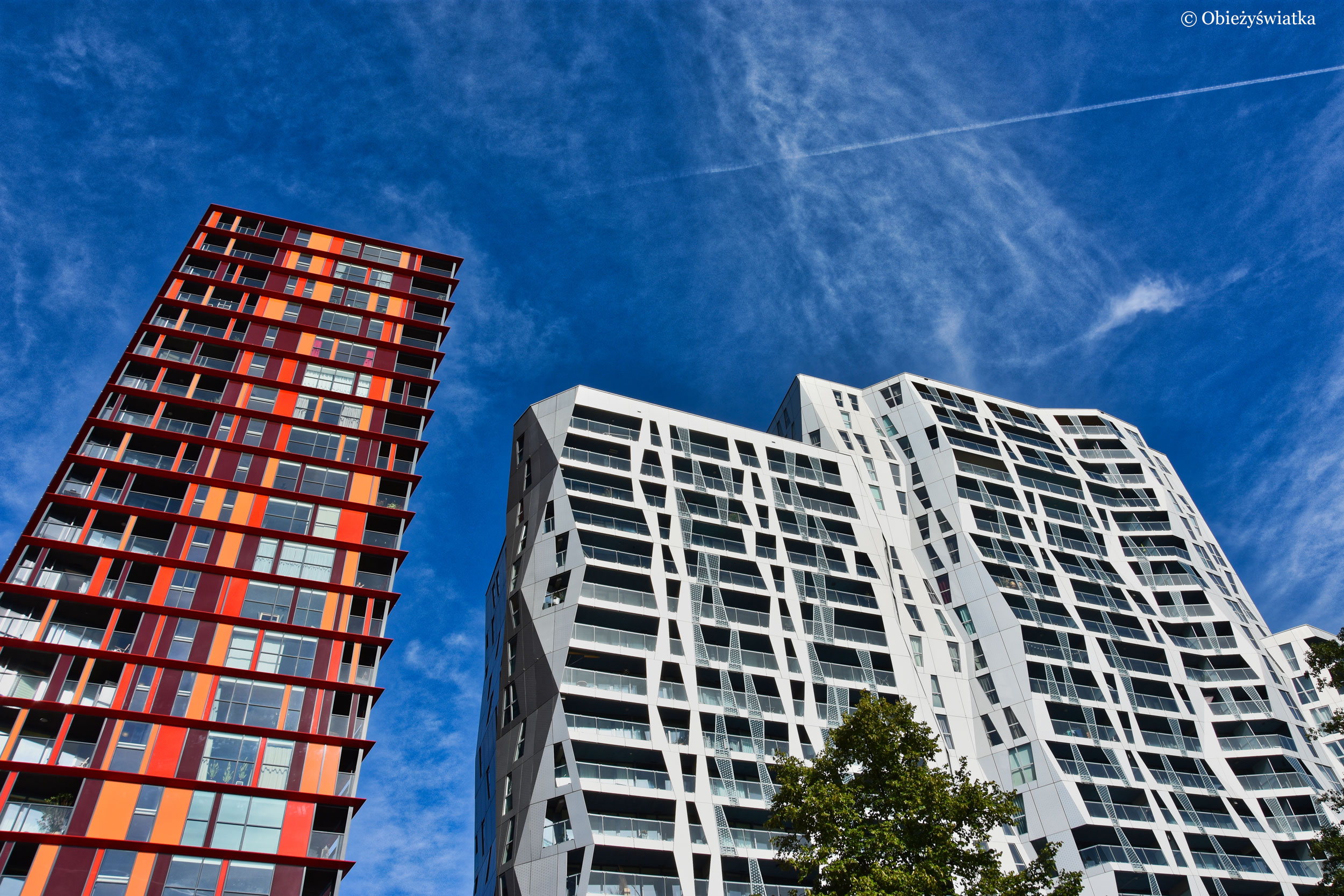 Złamana linia - Calypso, Rotterdam