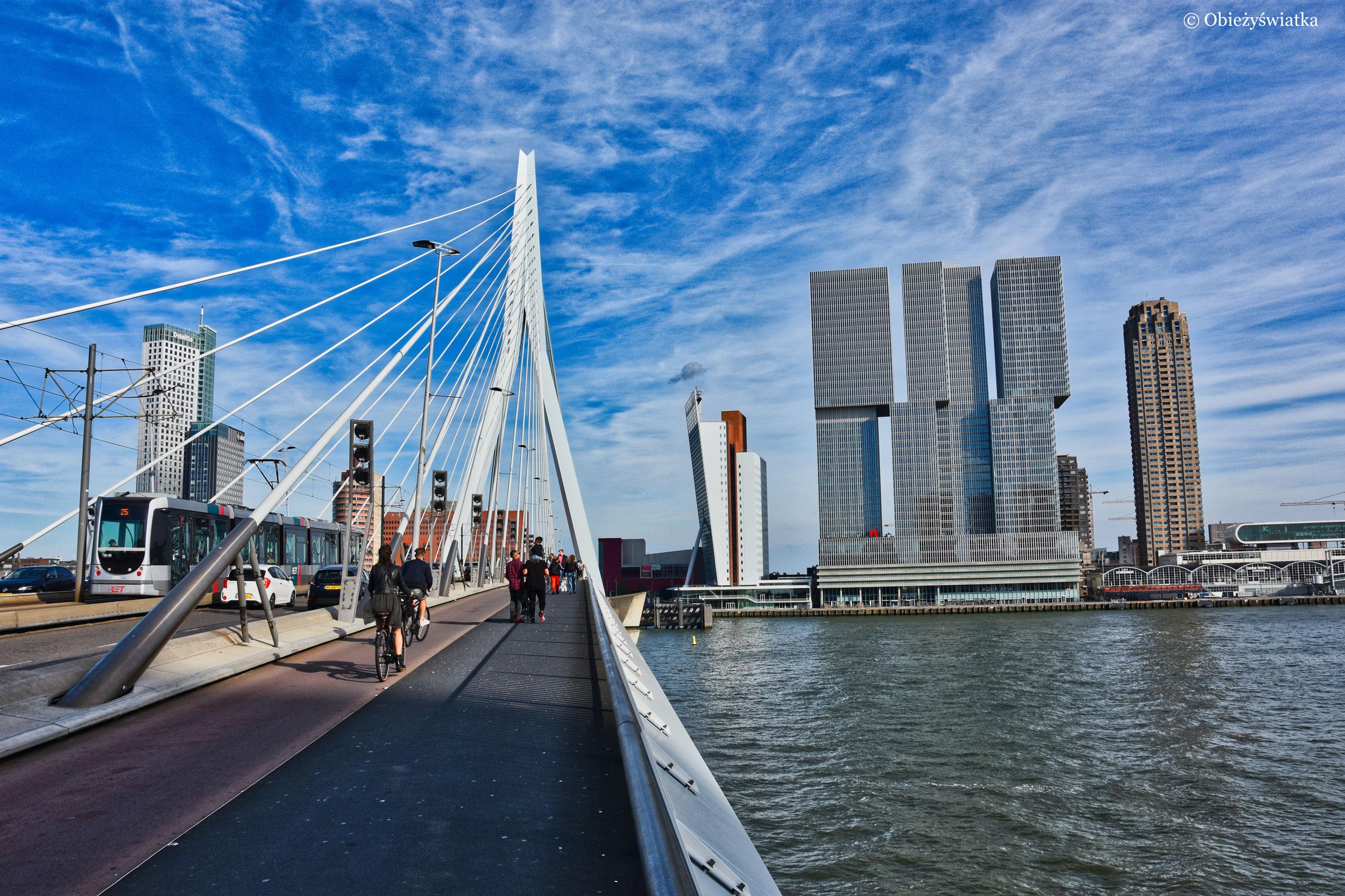Most Erasmusa i dzielnica portowa w Rotterdamie