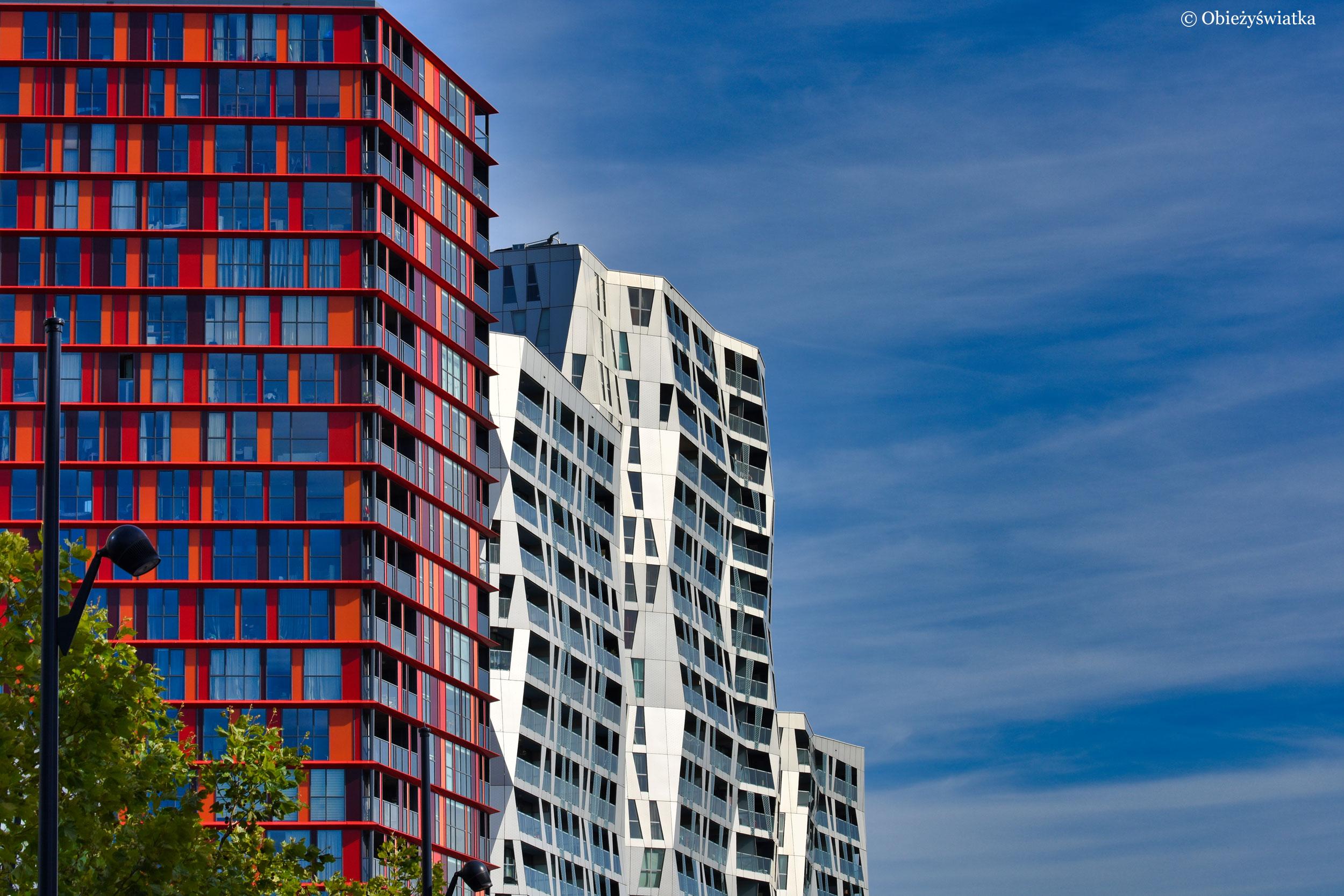 Gra bieli z kolorem, Calypso, Rotterdam