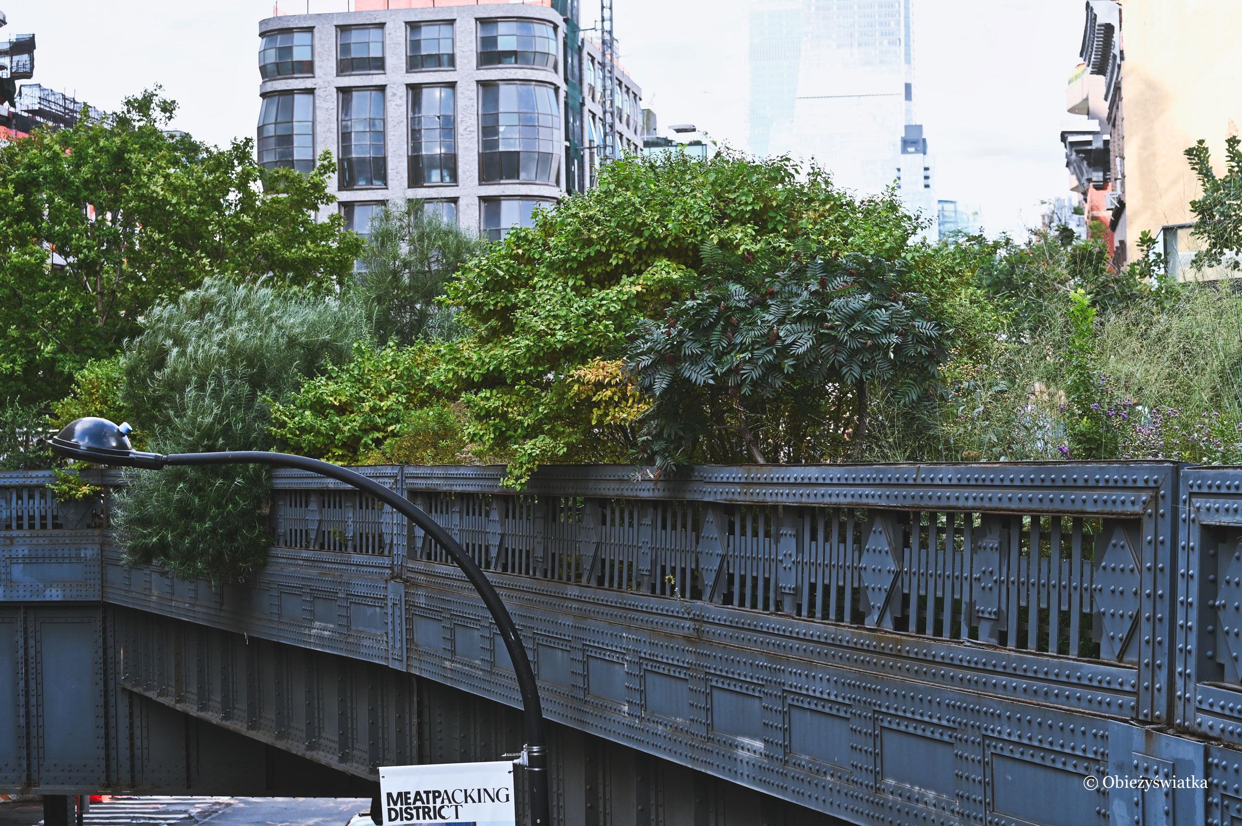 Park The High Line - Nowy Jork