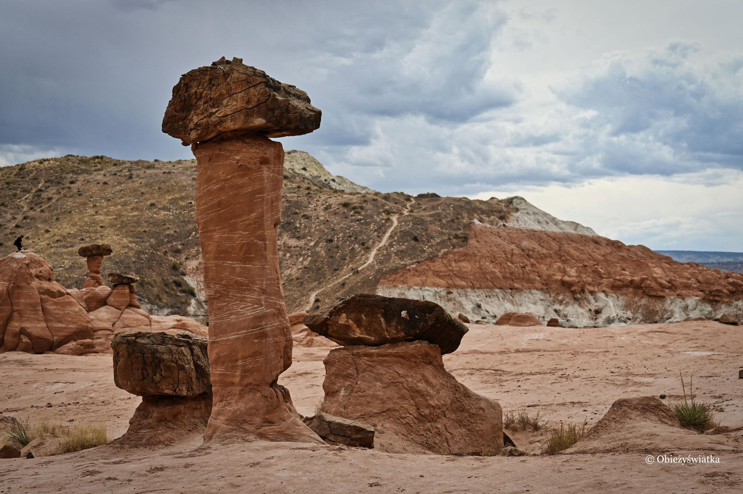 Kapelusz i nóżka, Hoodoos, Toadstools Trail, Utah
