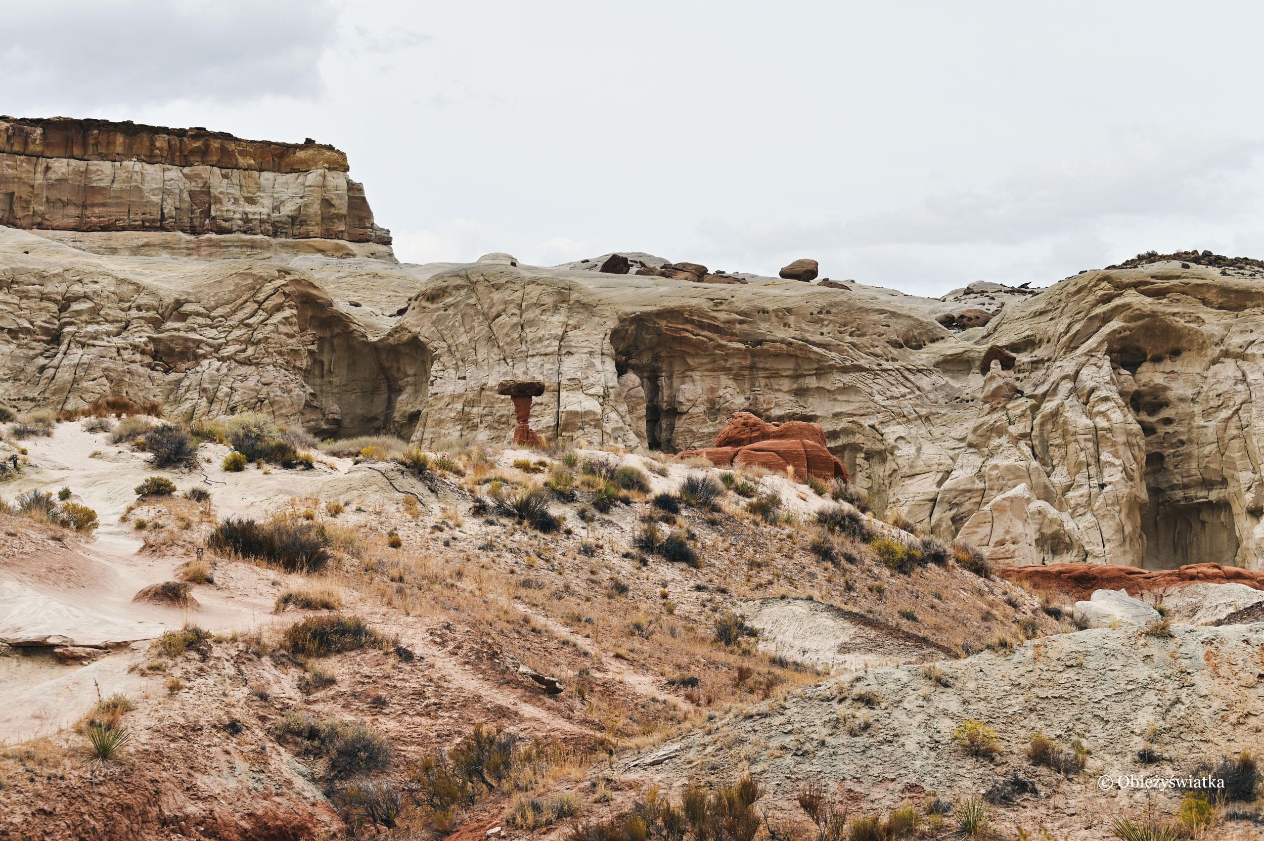 Hoodoos - jak grzyby po deszczu :), Toadstools Trail, Utah