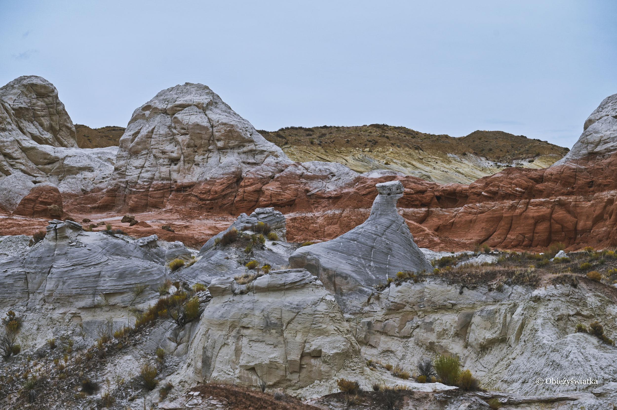 W krainie hoodoos, Toadstools Trail, Utah