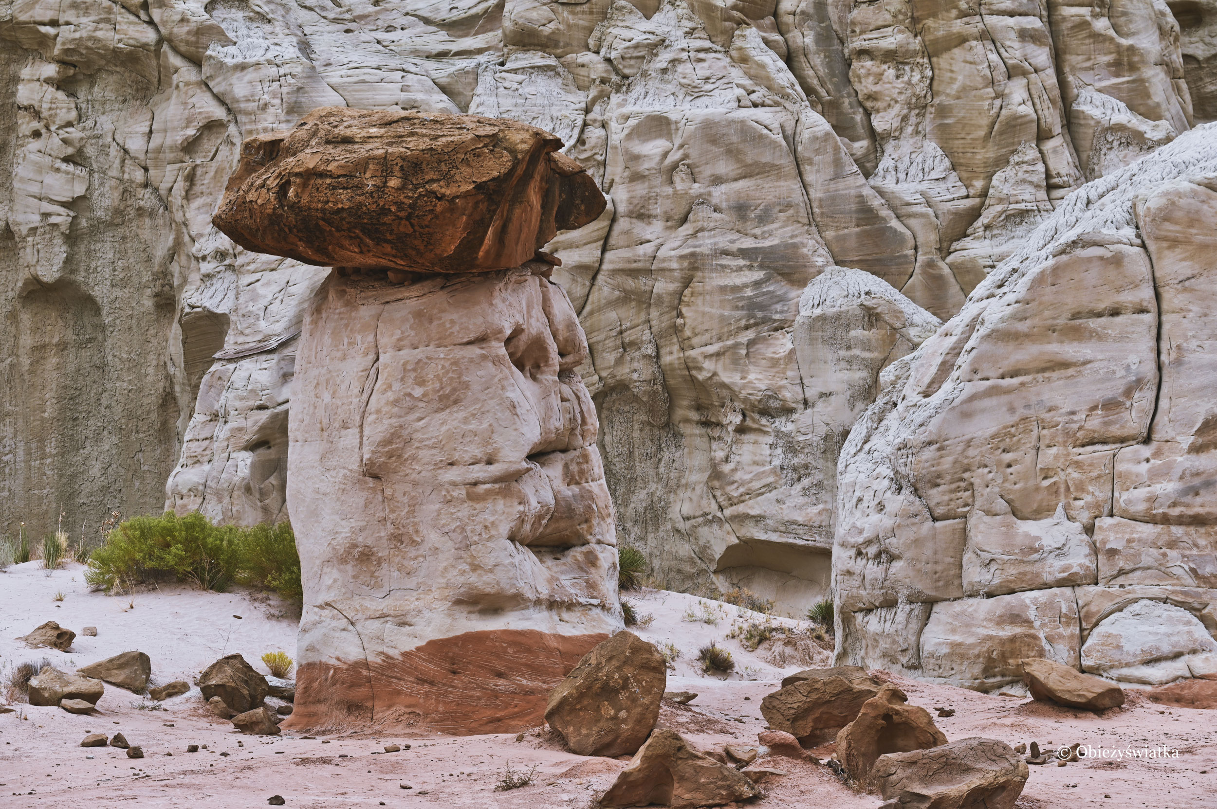 Jasna nóżka, ciemny kapelusz, Hoodoos, Toadstools Trail, Utah