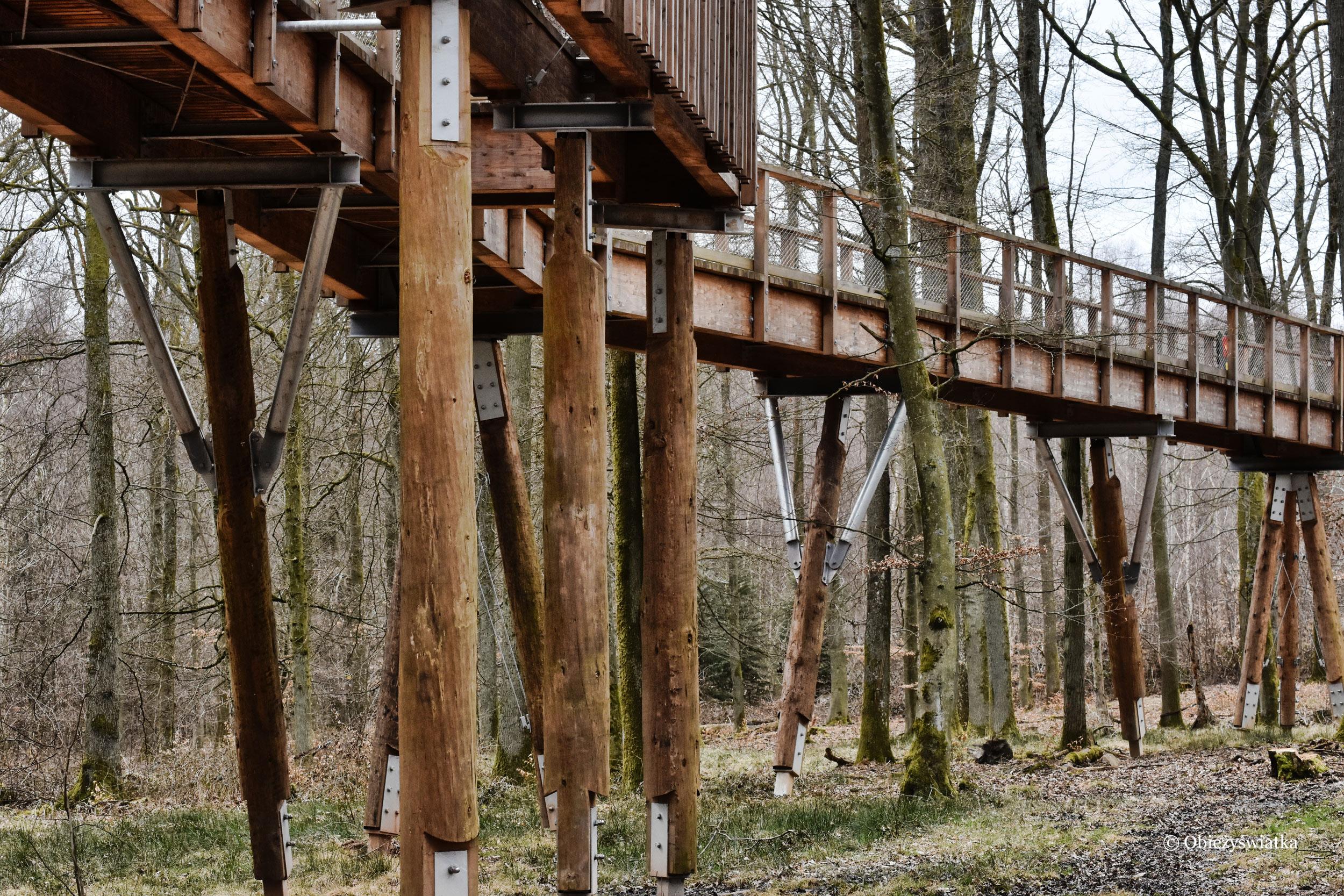Ścieżka wśród korony drzew - Saarschleife, Niemcy