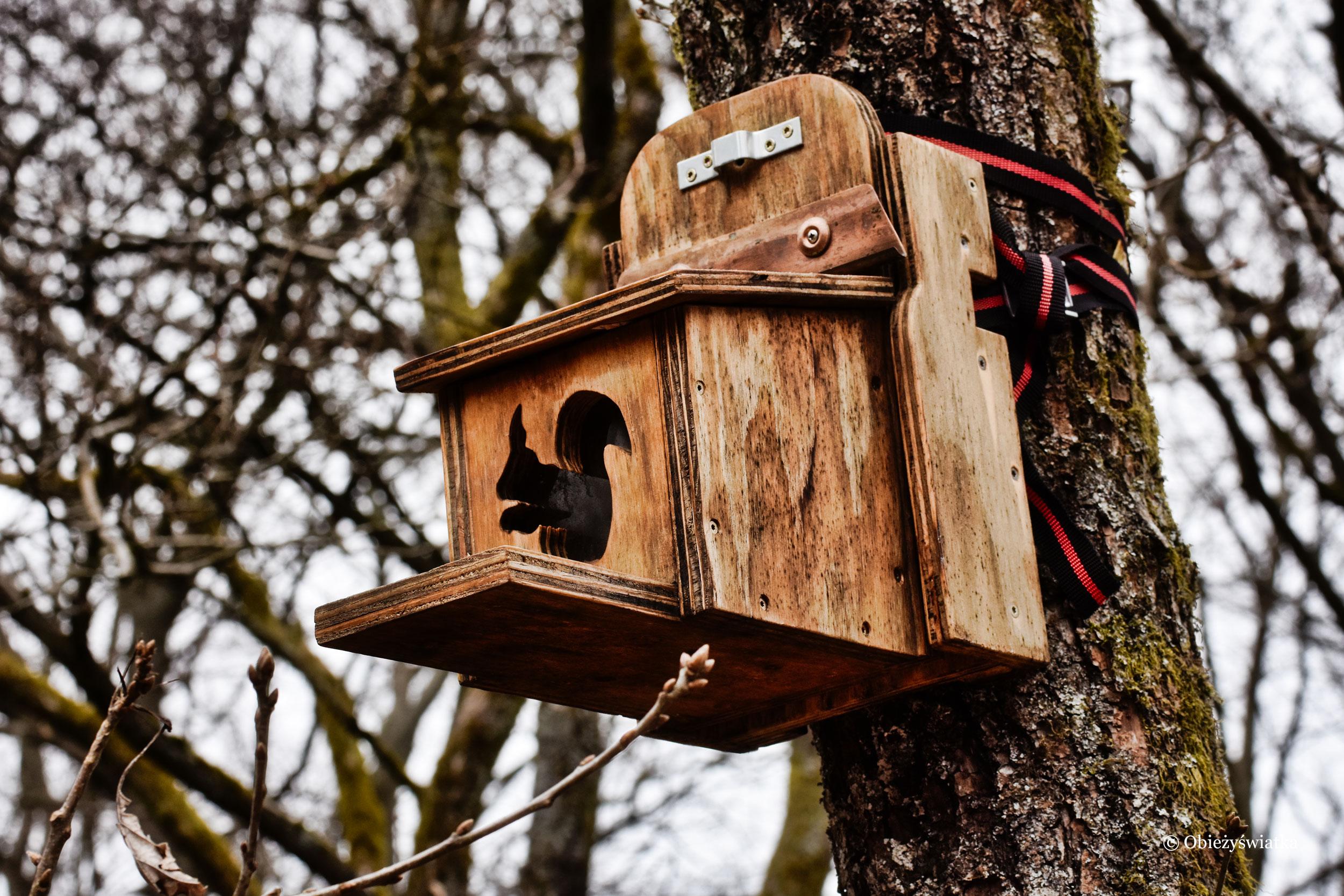 Domek dla wiewiórek - Zakole Saary