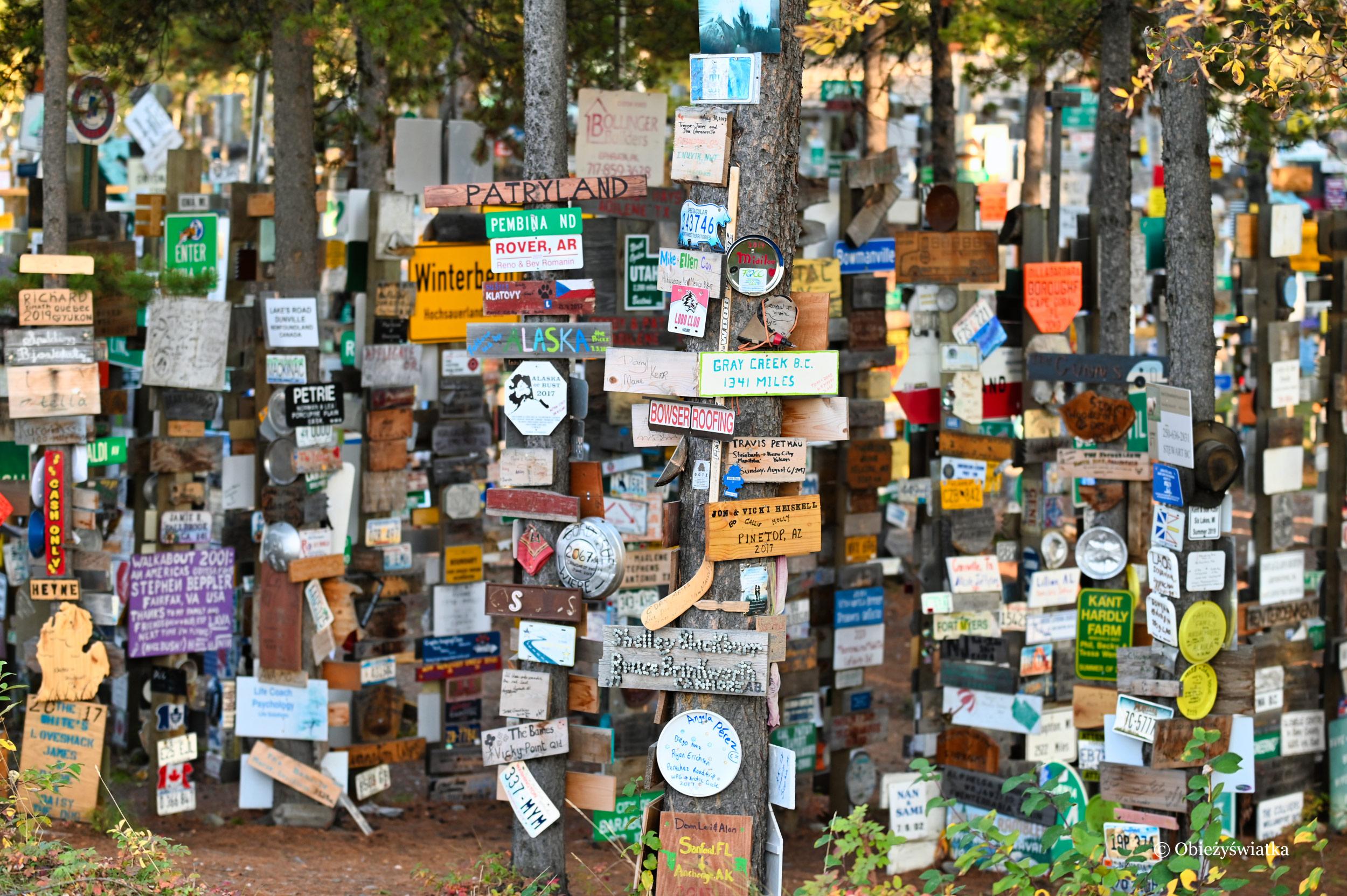 Sign Post Forest, czyli Las Drogowskazów, Watson Lake