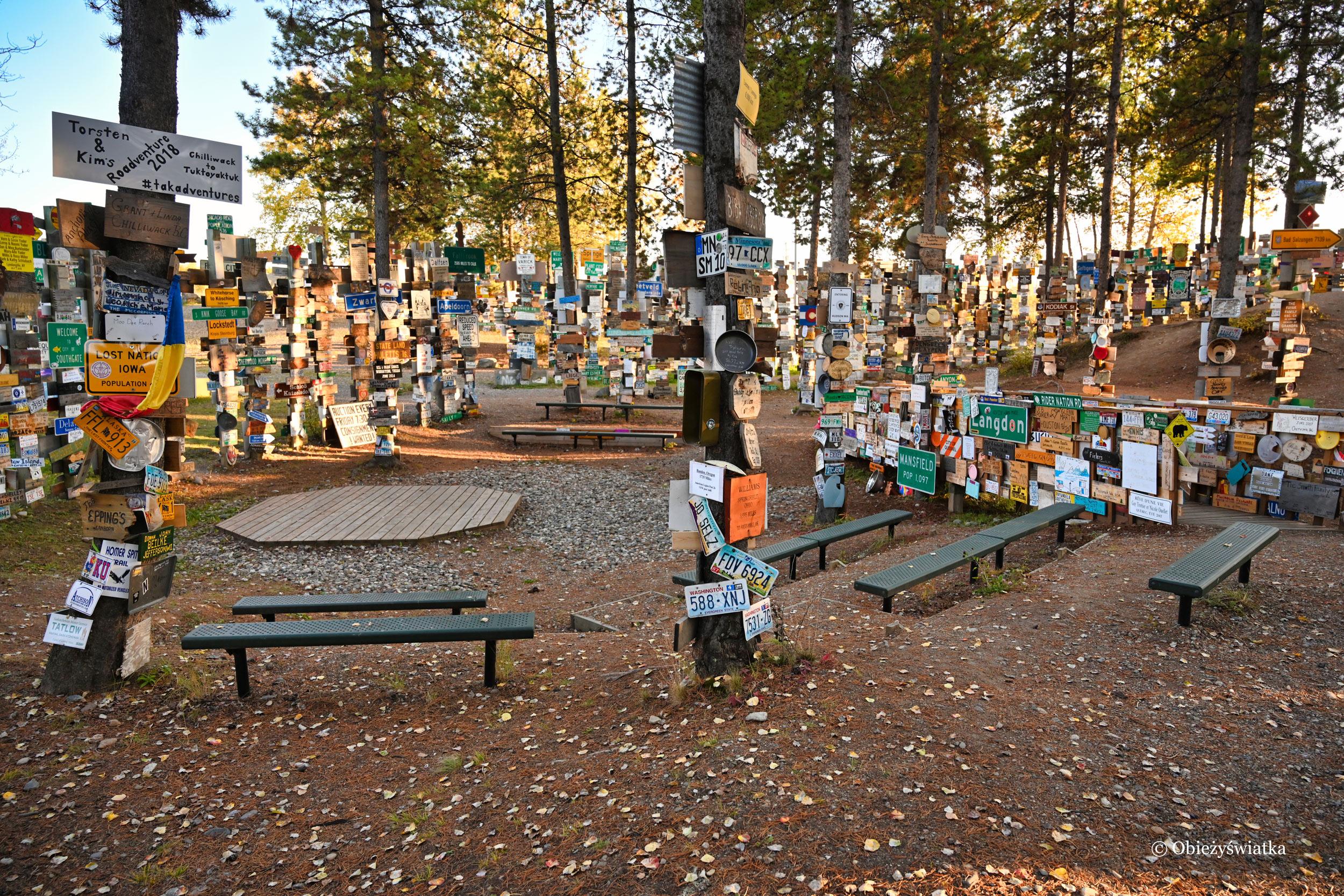 W kanadyjskim Lesie Drogowskazów / Sign Post Forest, Watson Lake