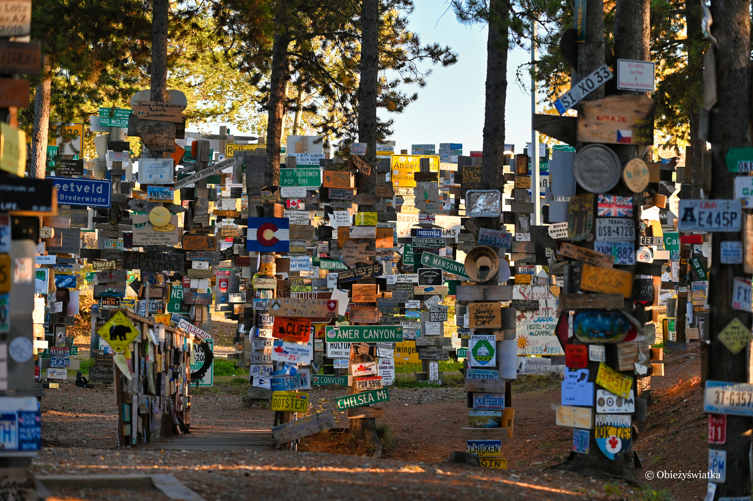 Do wyboru, do koloru - Sign Post Forest, Watson Lake
