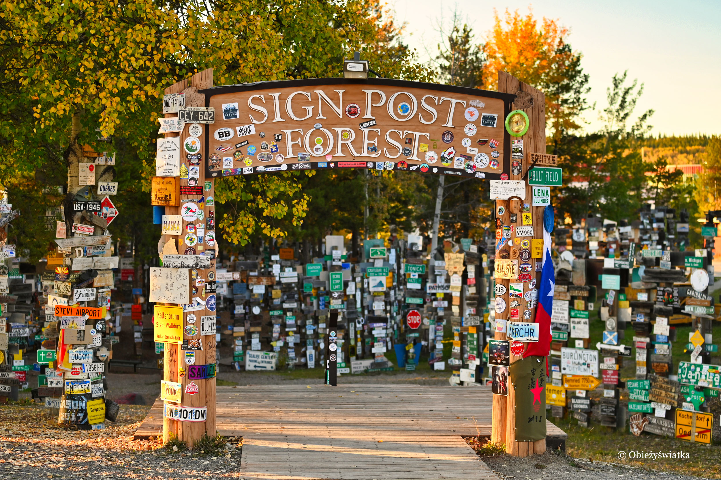 Sign Post Forest, czyli Las Drogowskazów w Watson Lake