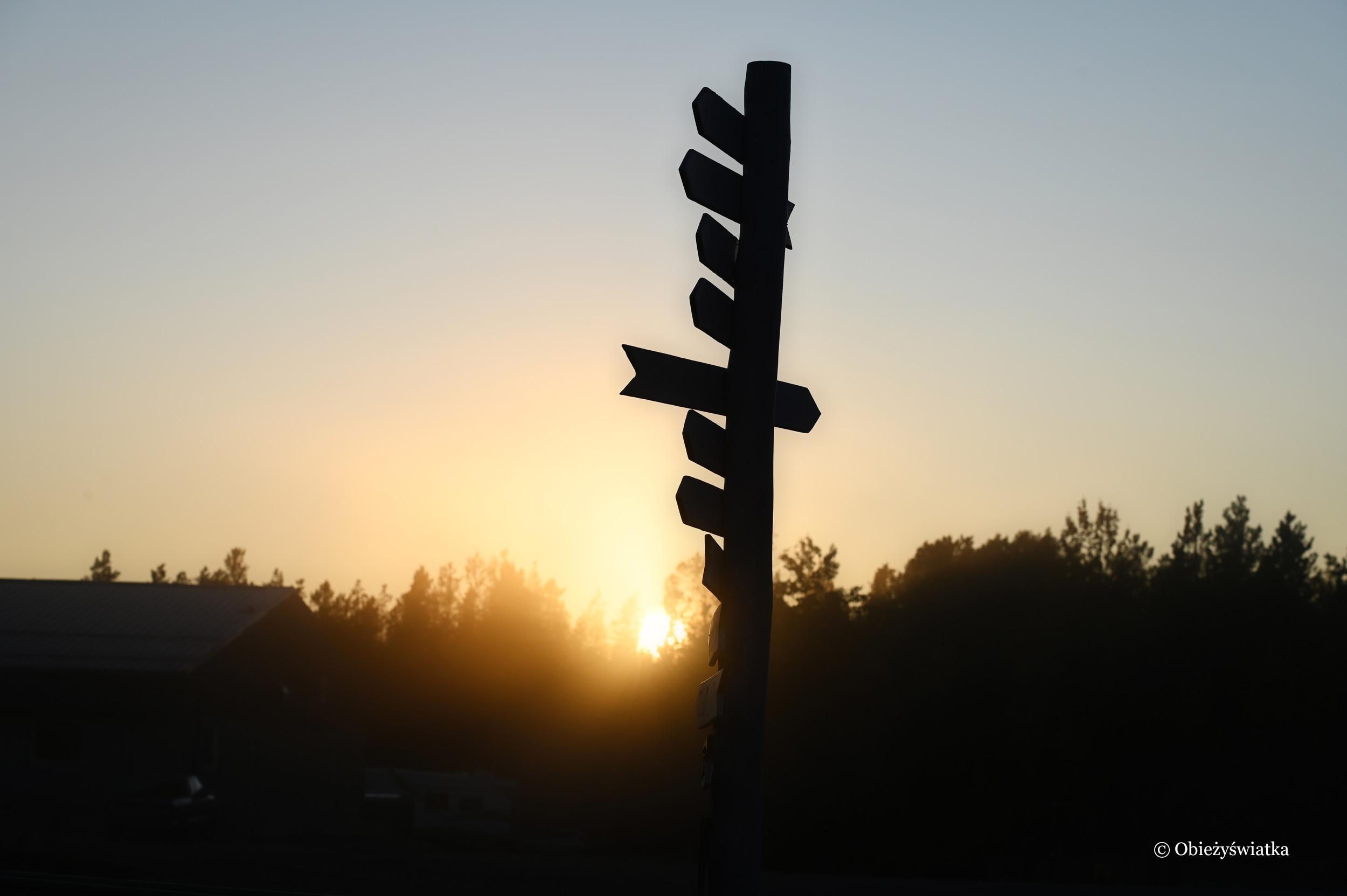 Sign Post Forest wieczorem, Watson Lake