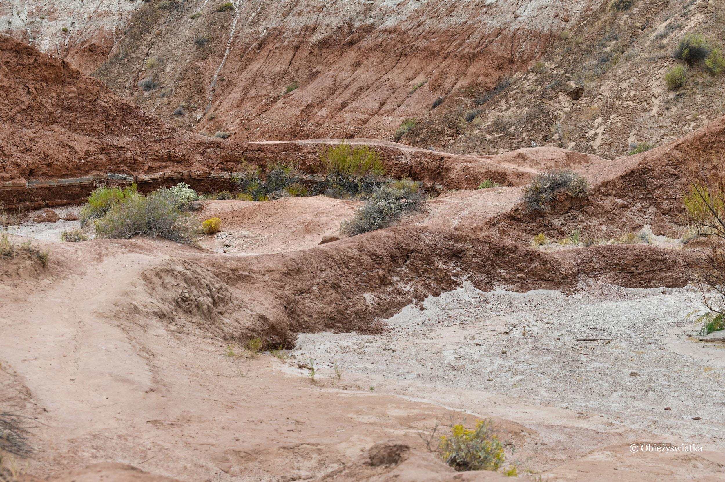 Szlakiem, Toadstools Trail, Utah