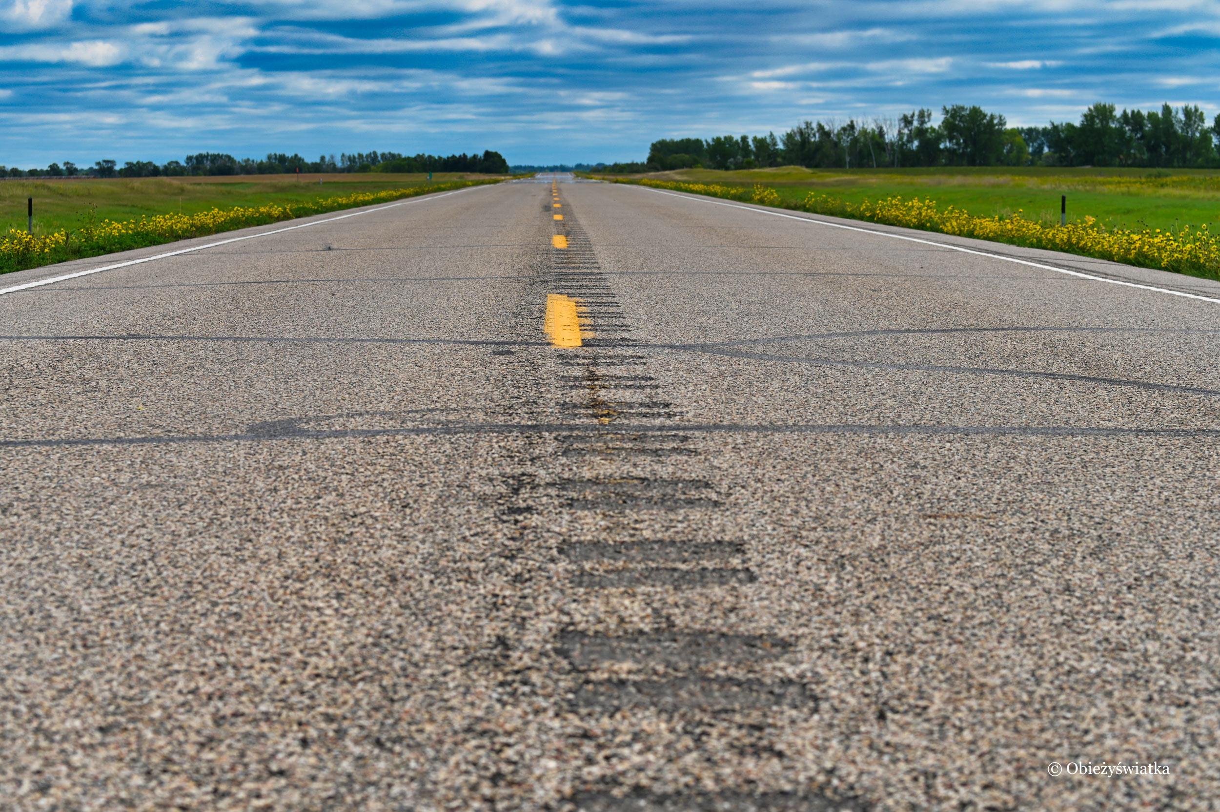 Droga w USA