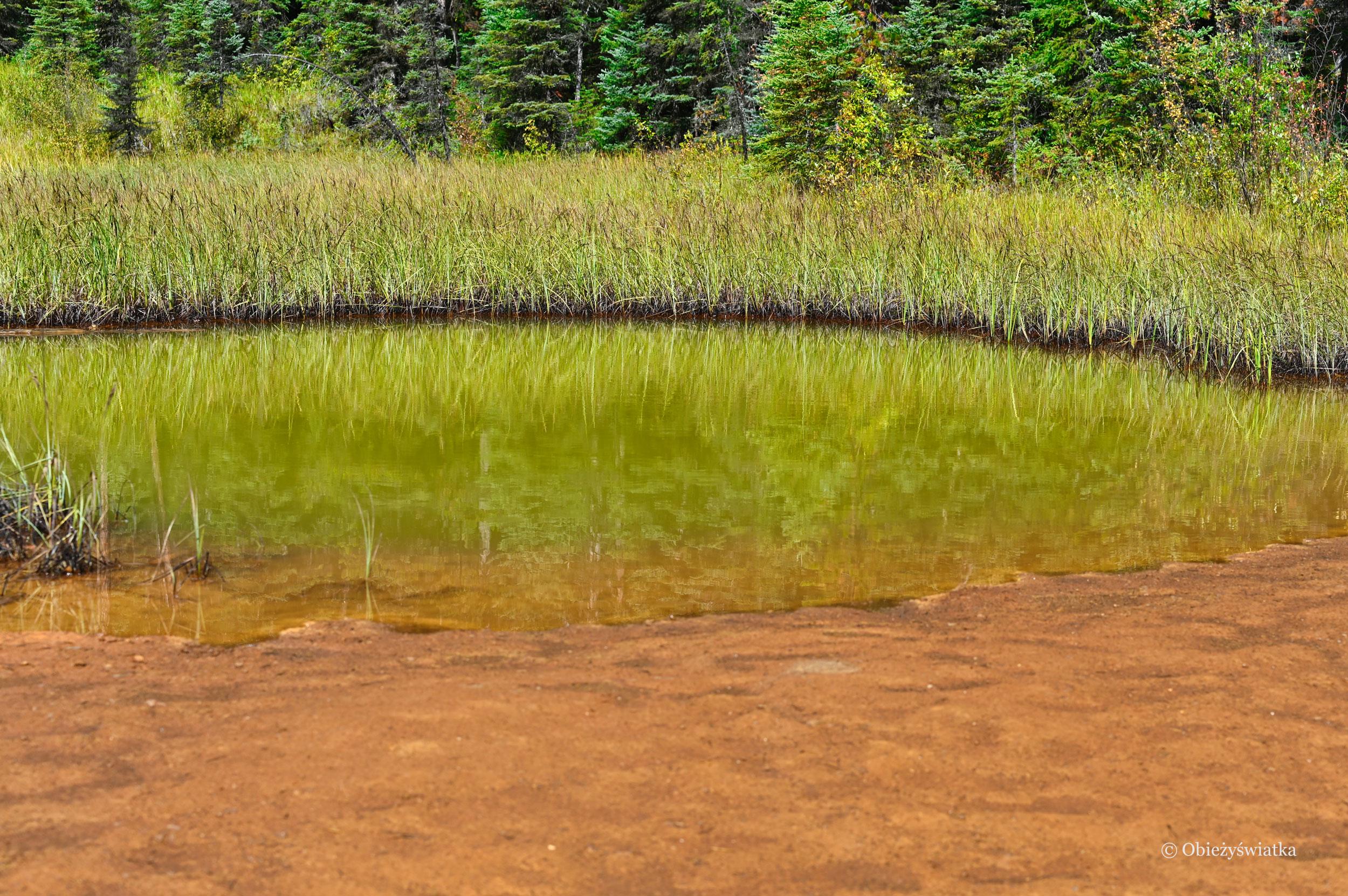 Kolorowe jeziorka w Kootenay National Park, Kanada