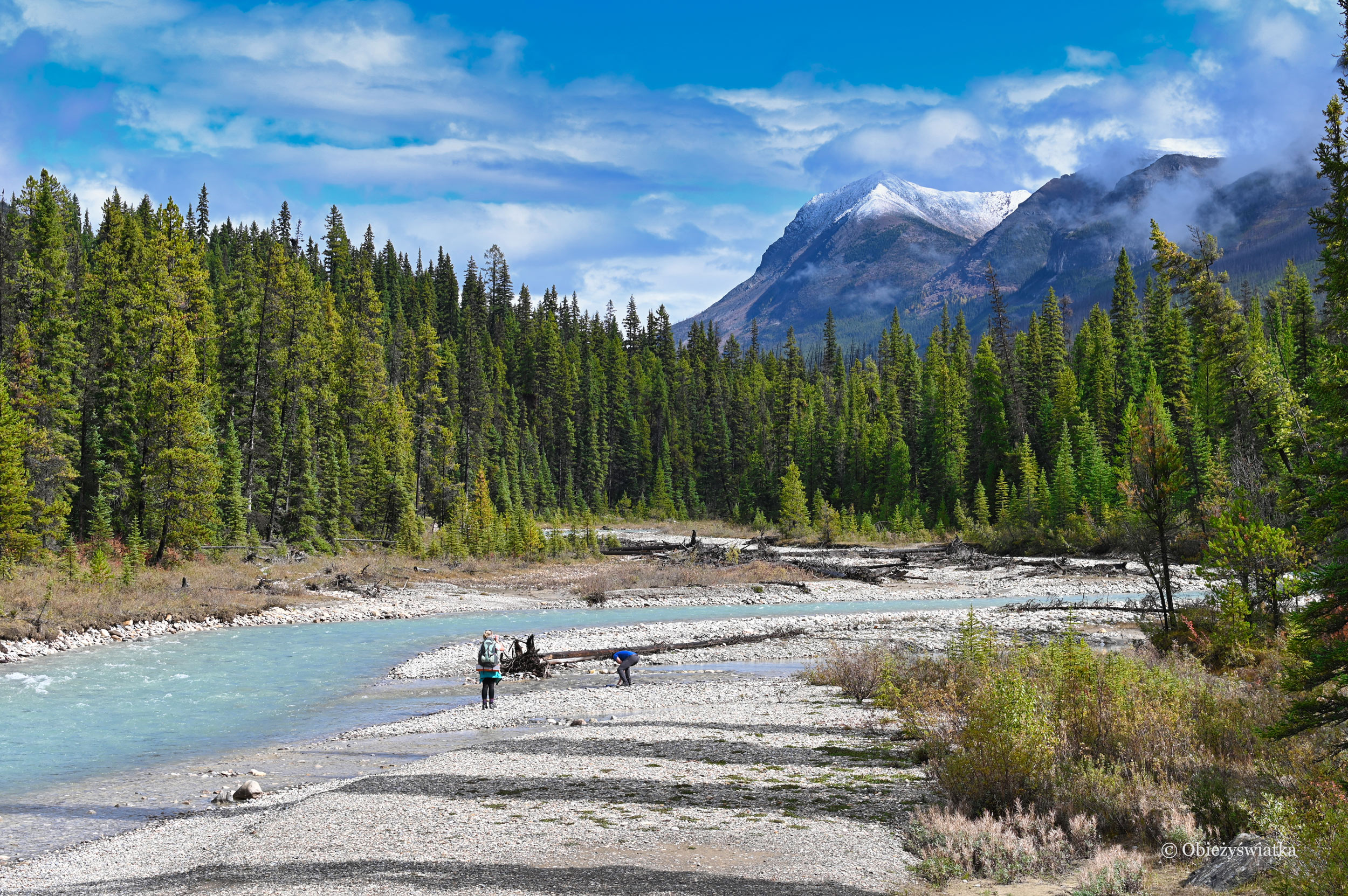 Czysta woda, piękne widoki, góry i las - Kootenay National Park, Kanada