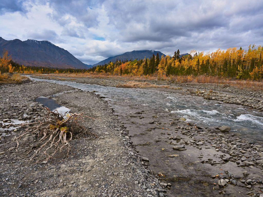 Kluane National Park, Canada, Yukon