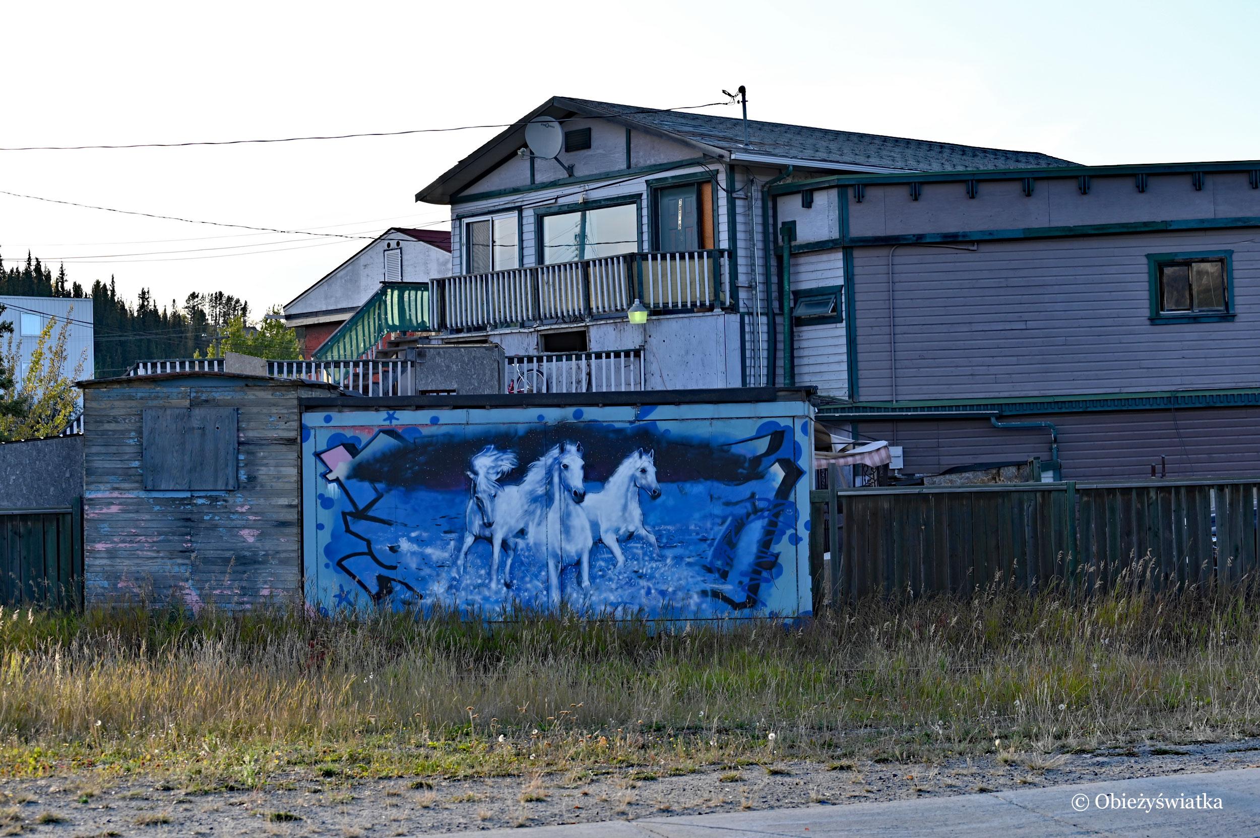 Białe konie - mural w Whitehorse, Kanada