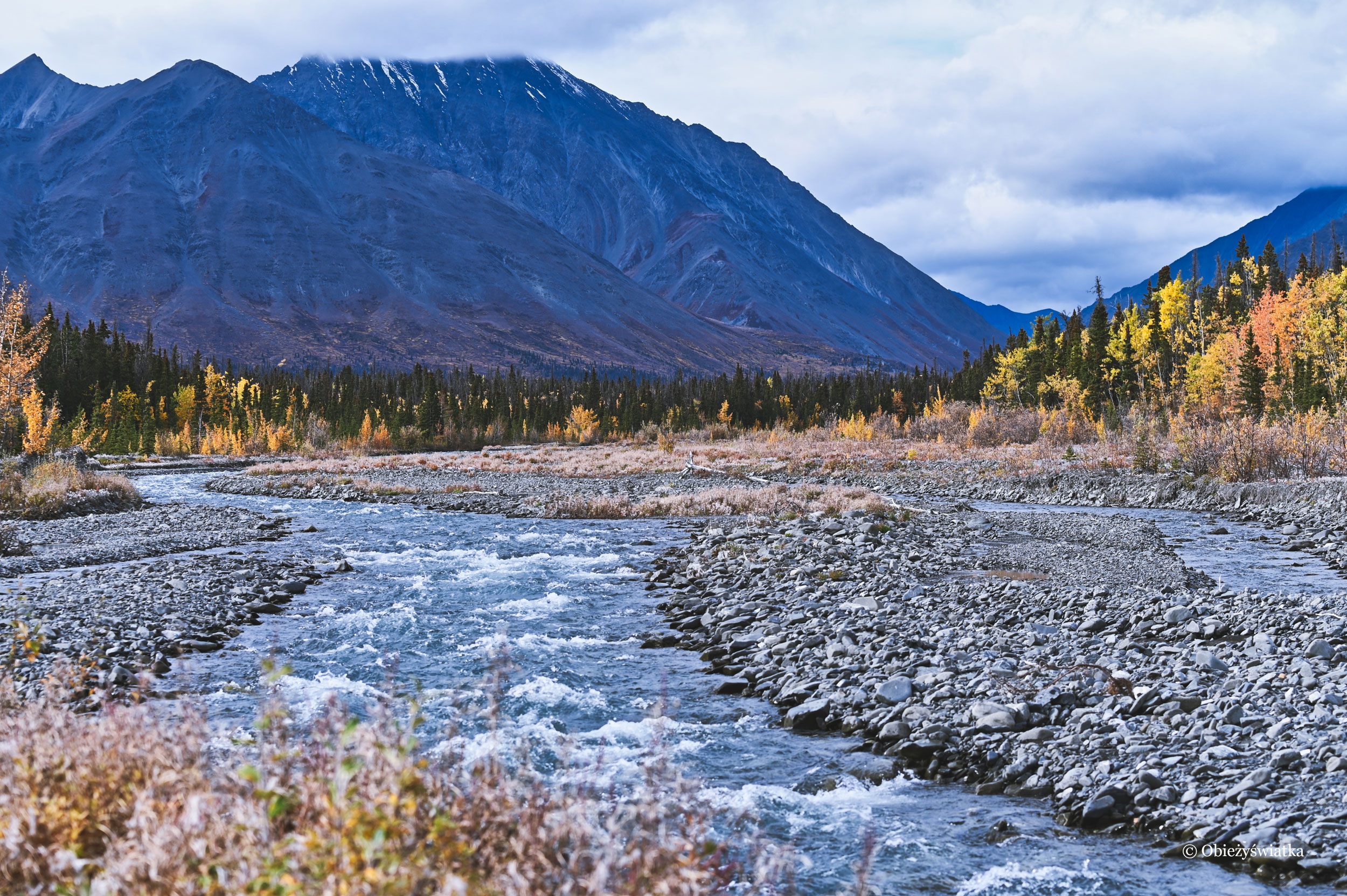 Quill Creek, Kluane National Park, Canada