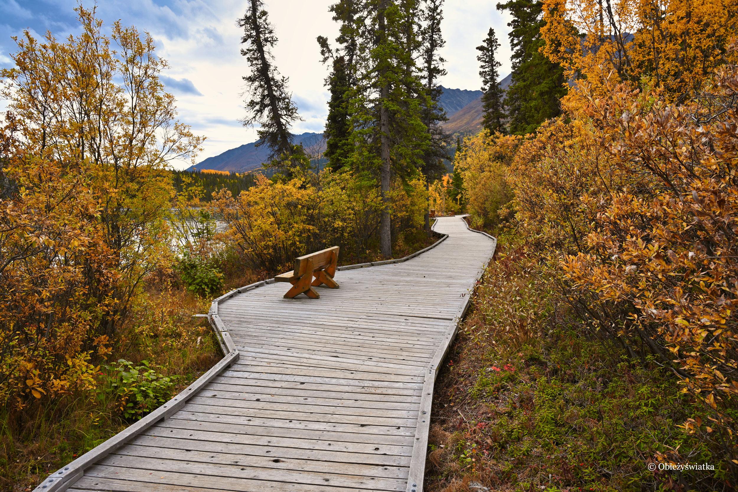 Ścieżka wokół Kathleen Lake, Kluane National Park, Kanada