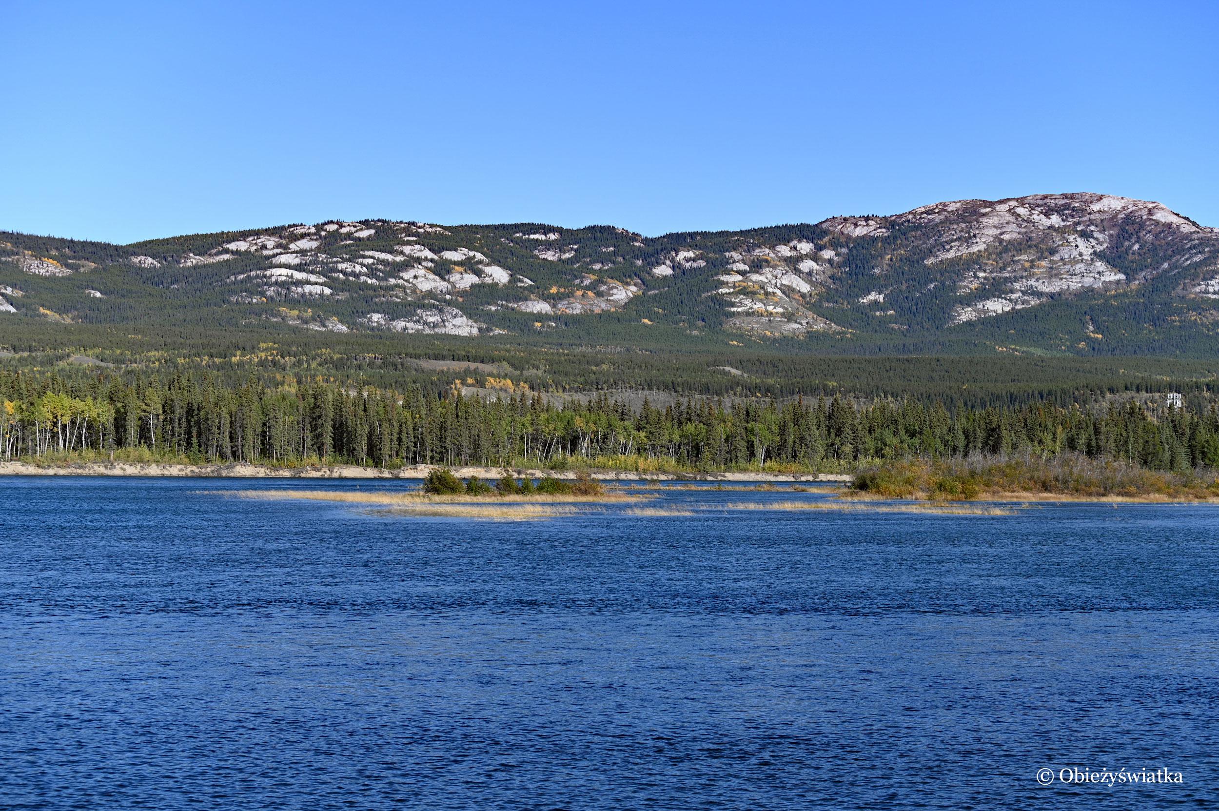 Piękna rzeka Yukon, Whitehorse, Kanada
