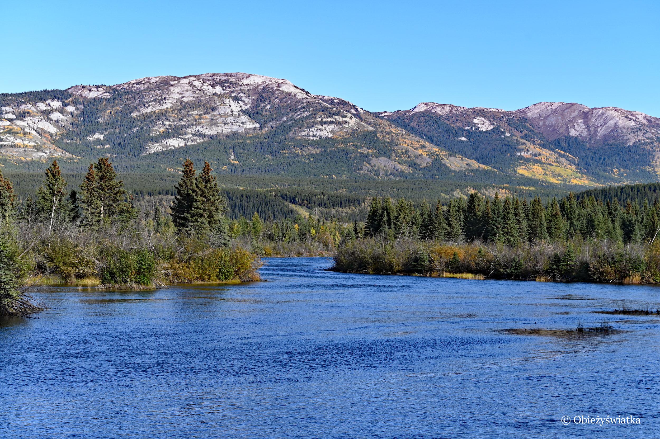 Whitehorse i rzeka Yukon, Kanada