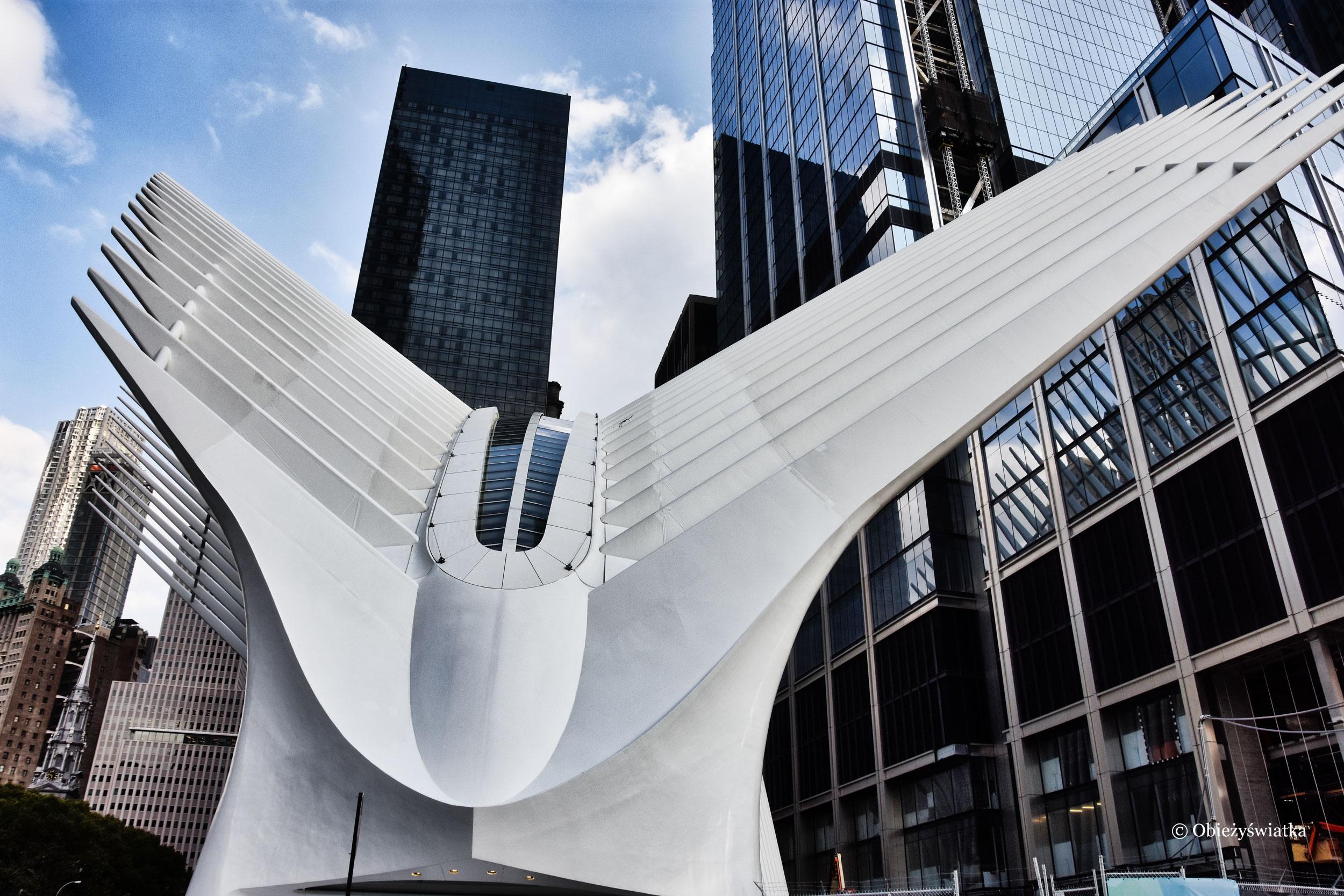 Charakterystyczna szkieletowa konstrukcja projektu Calatravy, NYC