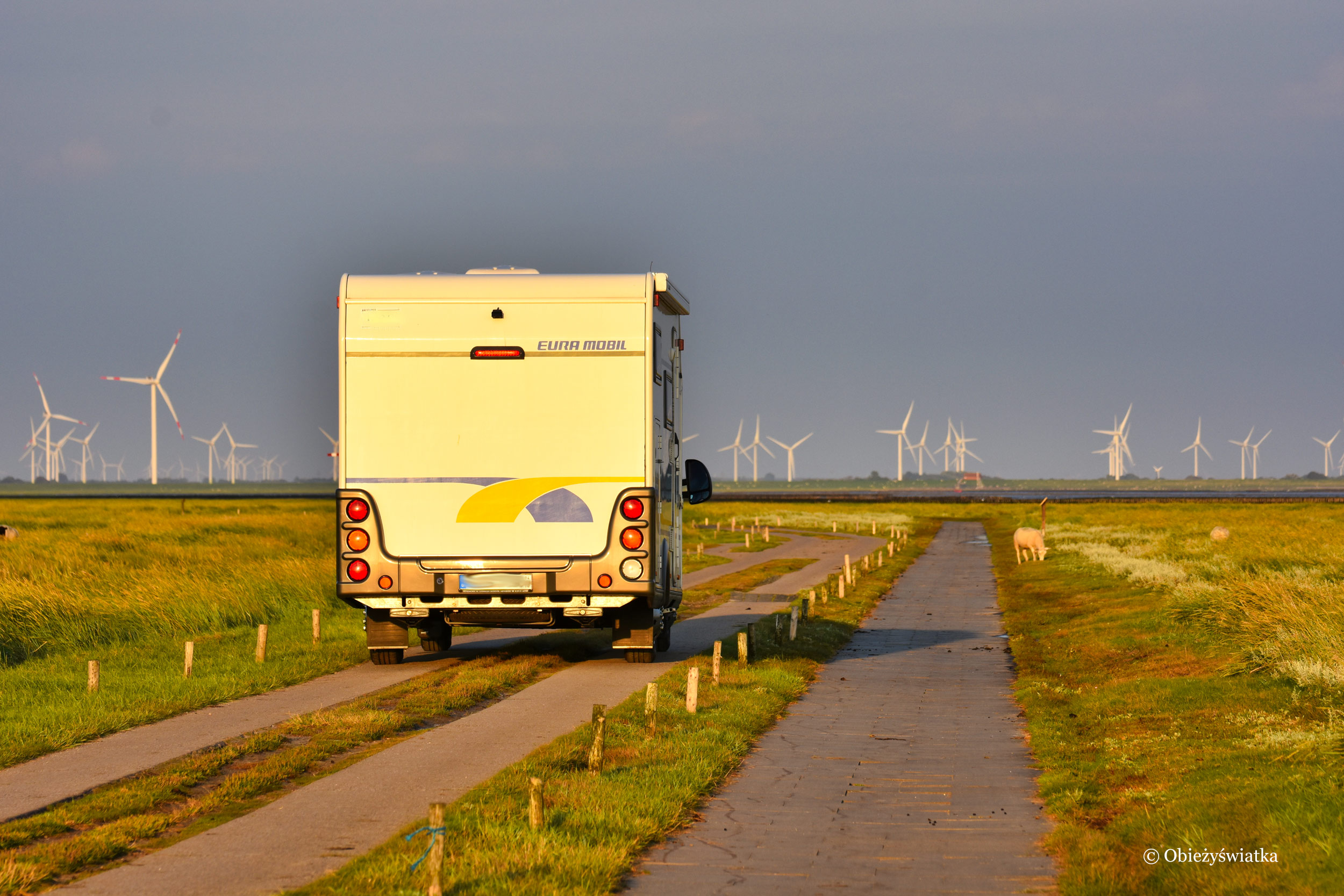Kamperem nad Morzem Północnym, Niemcy