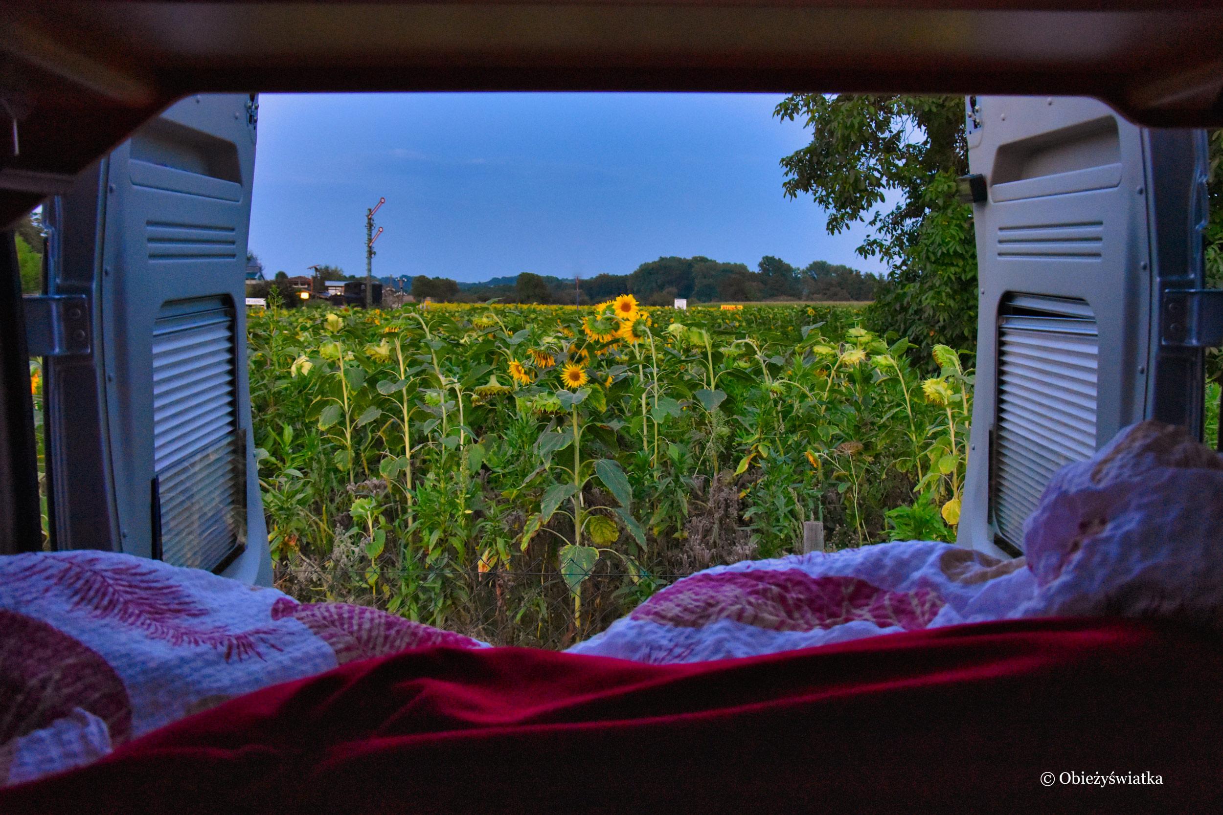 Kamperowa sypialnia z widokiem na pole słoneczników, Niemcy