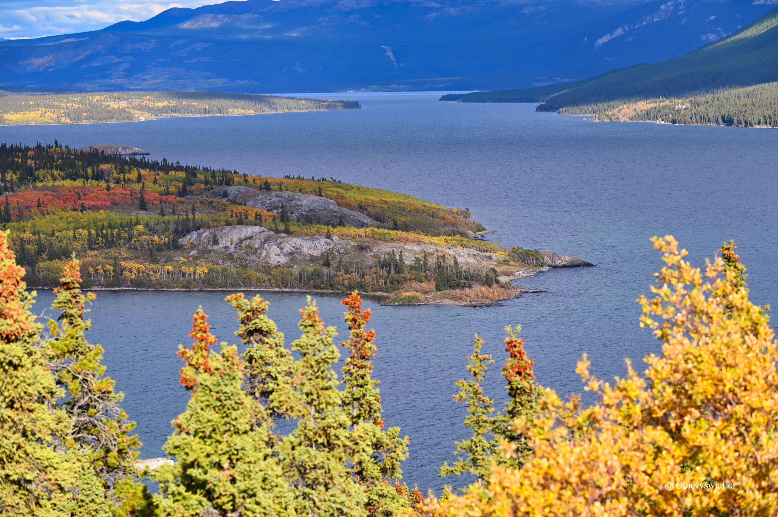 Tagish Lake i Bove Island, Kanada