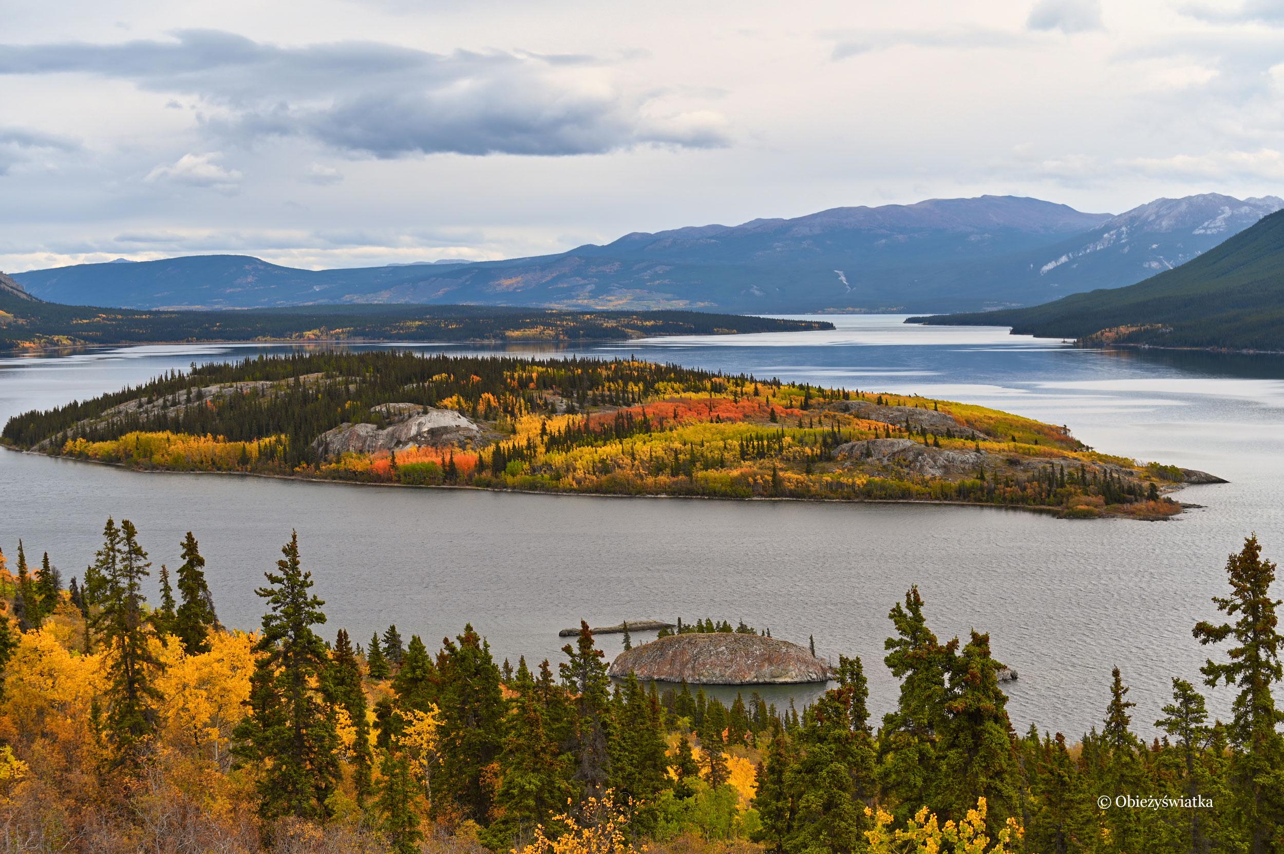 W kolorach jesieni - Bove Island, Tagish Lake, Kanada