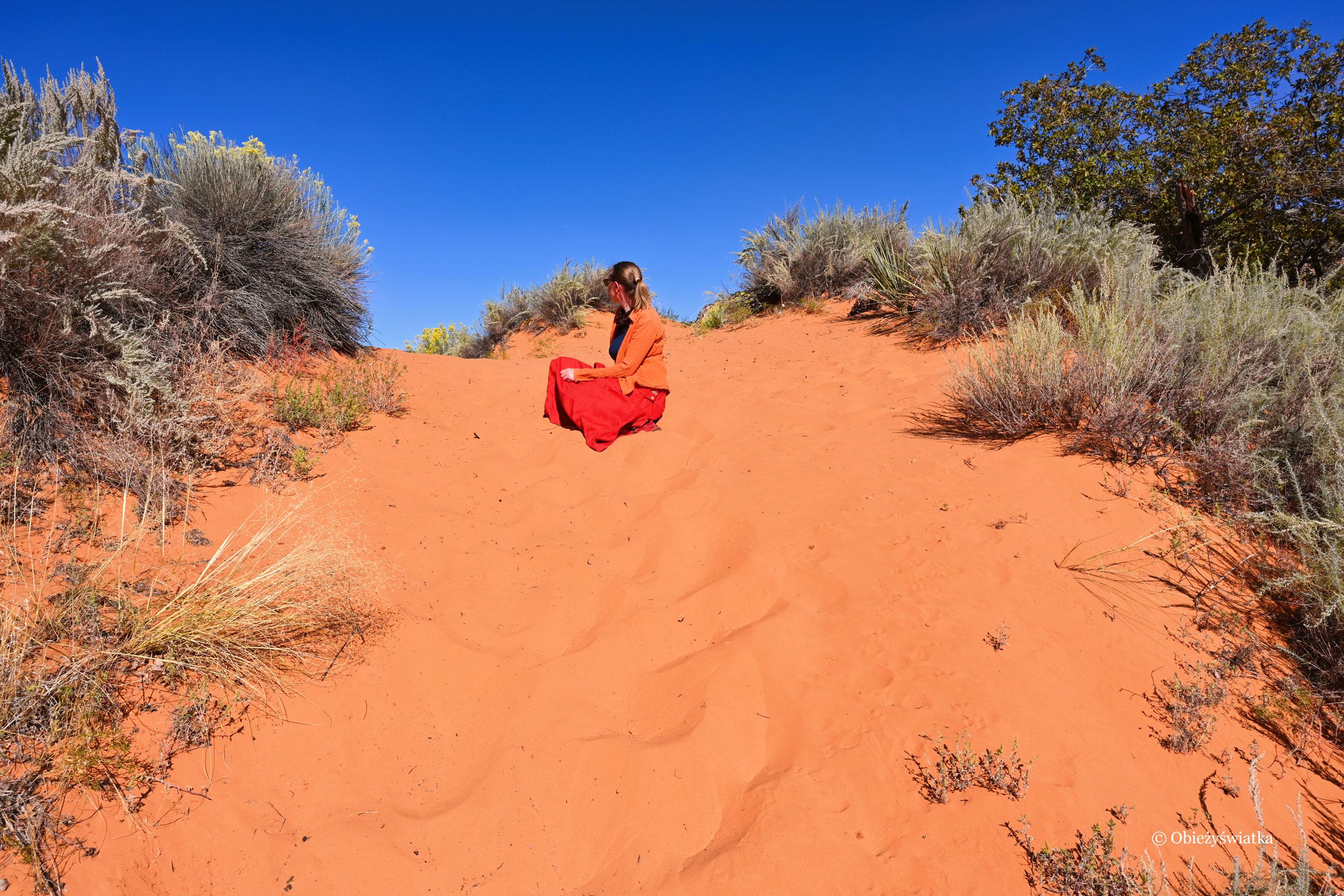 Wtapiając się w tło ;), Coral Pink Sand Dunes State Park, Utah