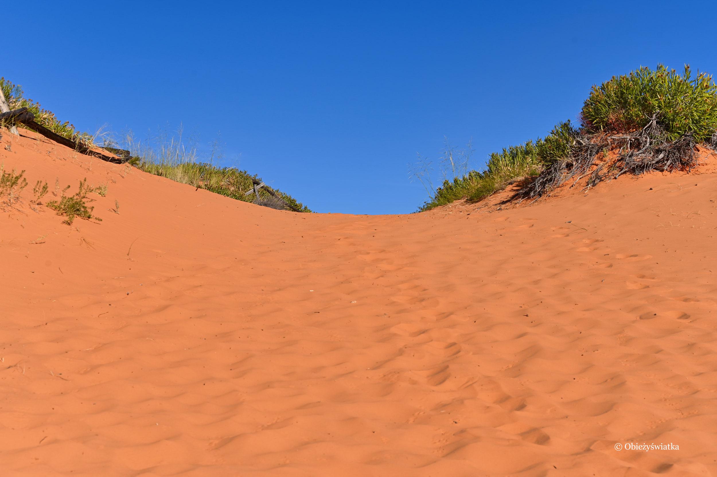 Po horyzontu kres...., Coral Pink Sand Dunes State Park, Utah