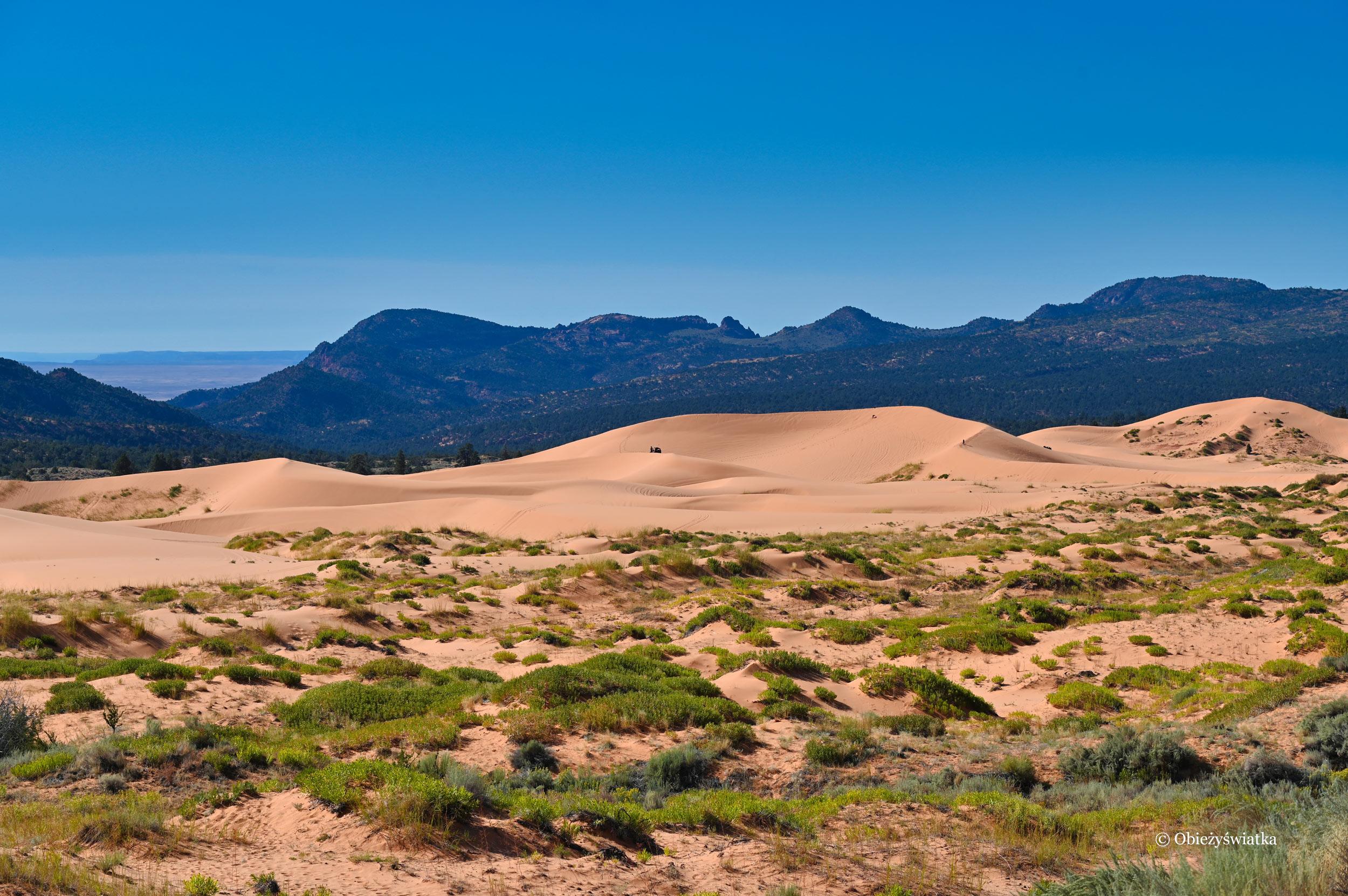 Utah to jeden z piękniejszych stanów USA, Coral Pink Sand Dunes State Park