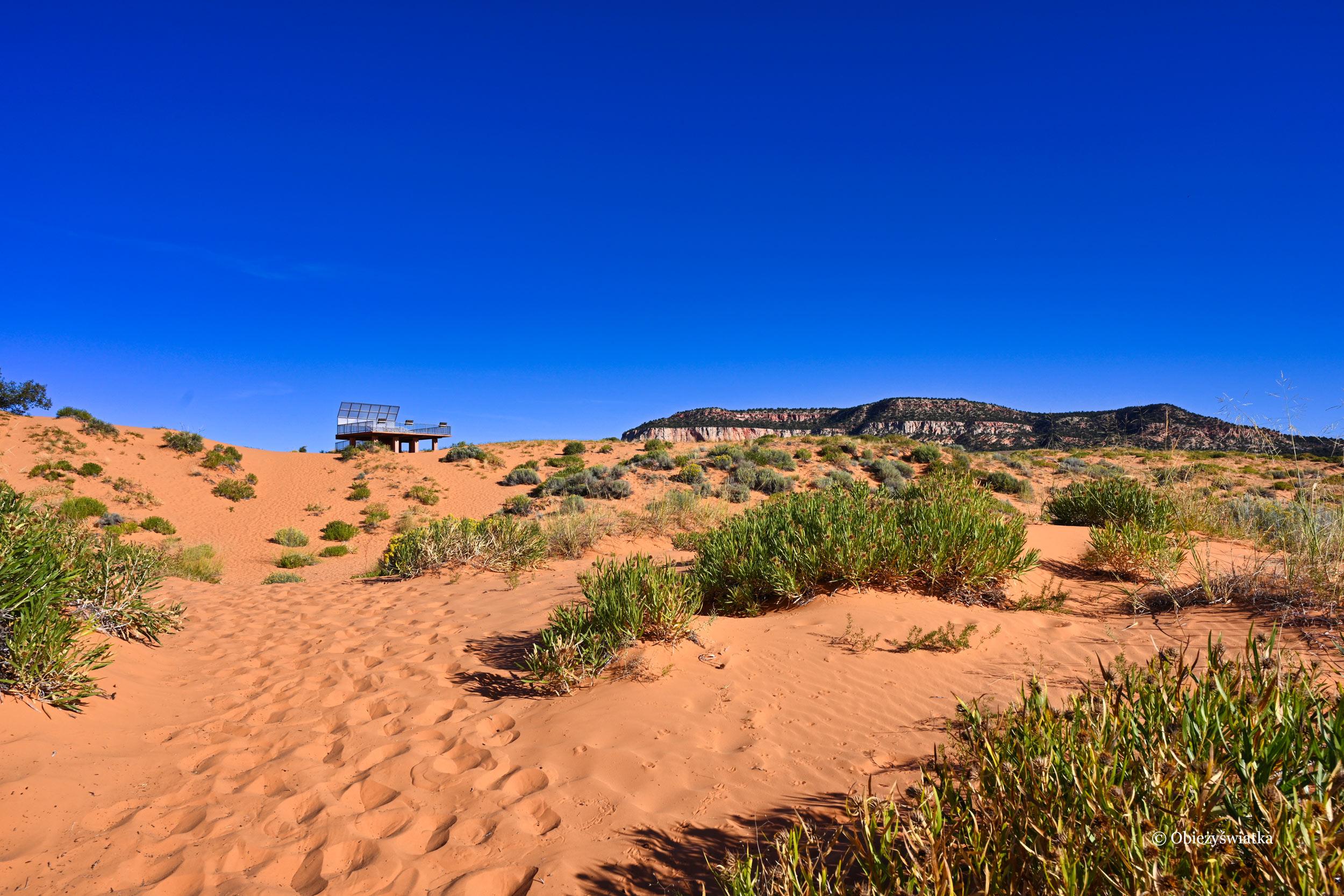 Platforma widokowa, Coral Pink Sand Dunes State Park, Utah