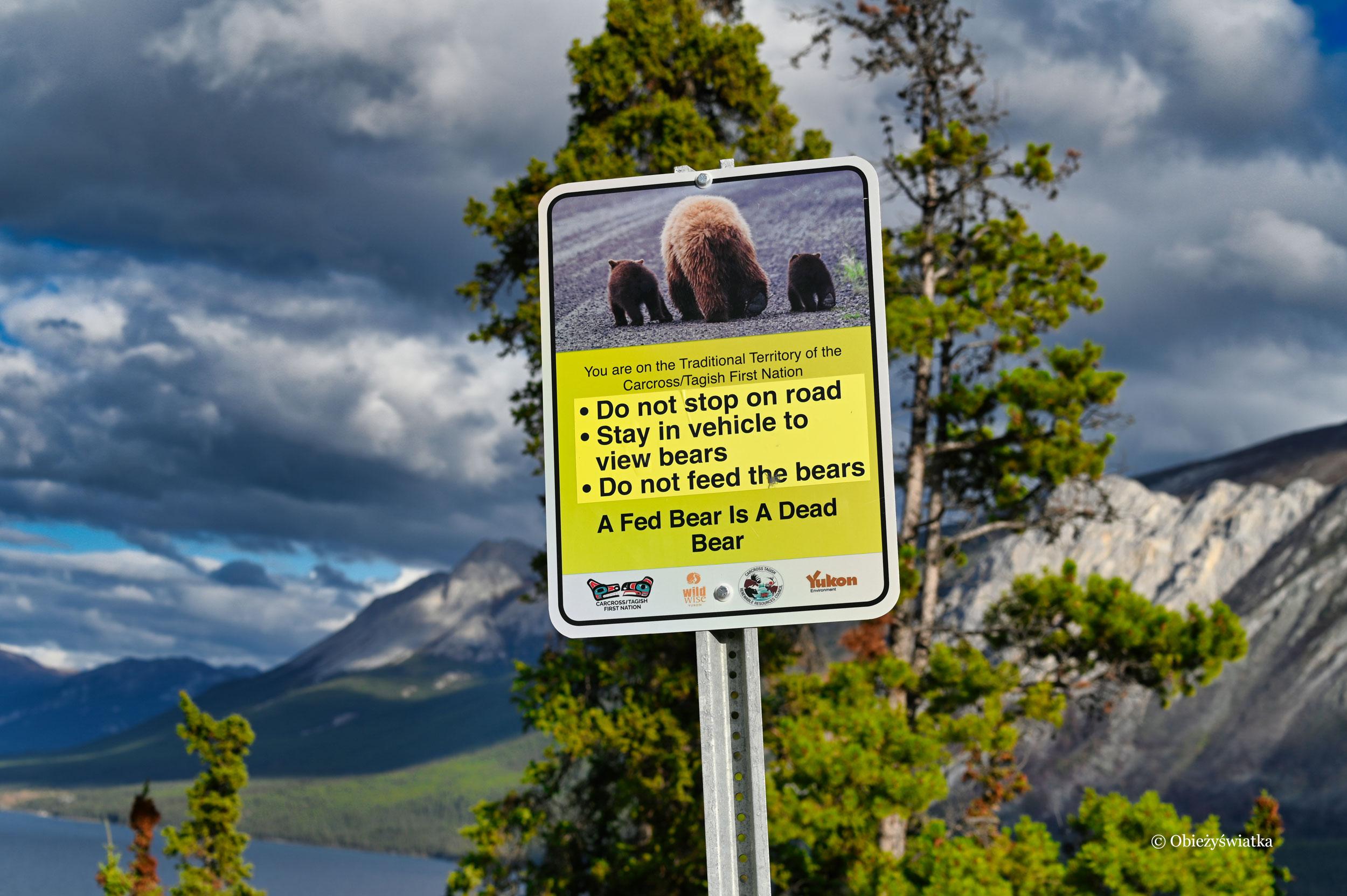 Reguły przy spotkaniach z niedźwiedziami, Yukon, Kanada
