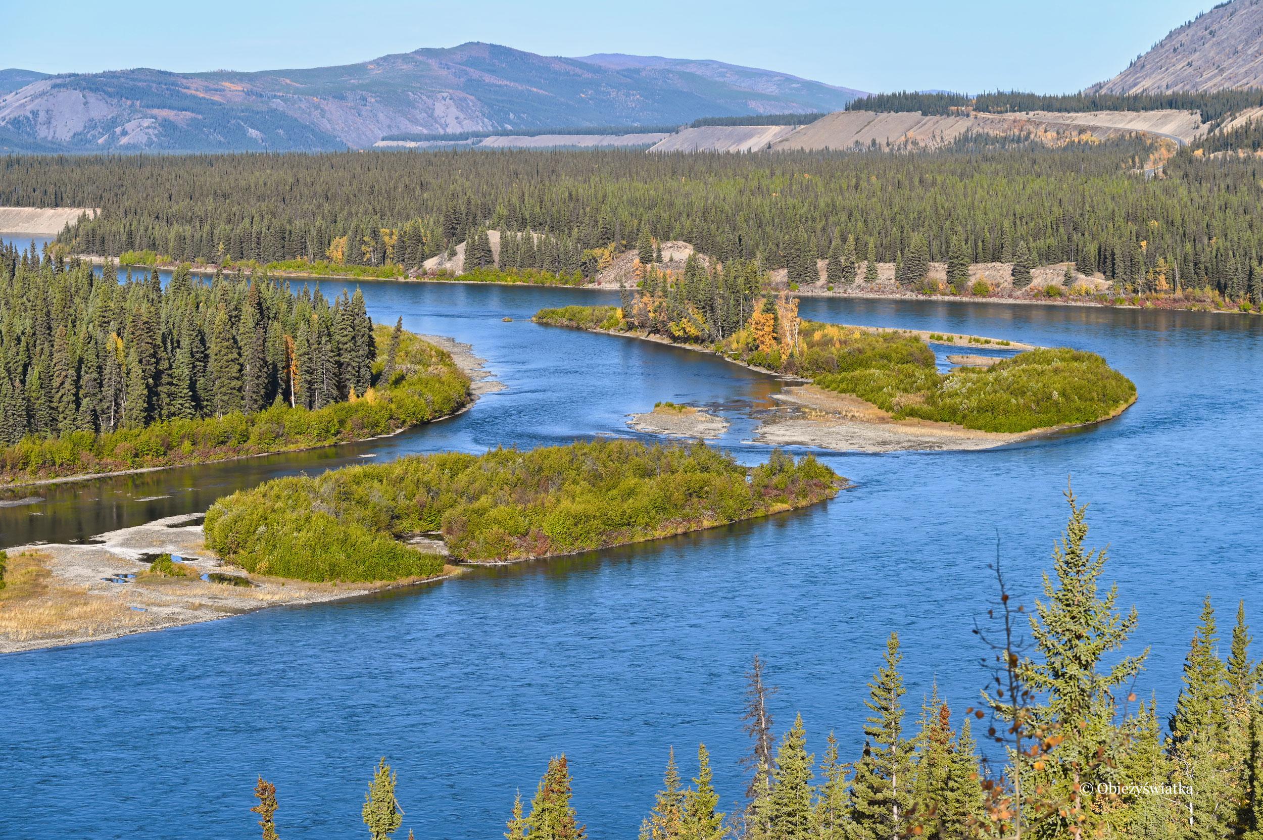 Rzeka Yukon widziana z Klondike Highway, Kanada