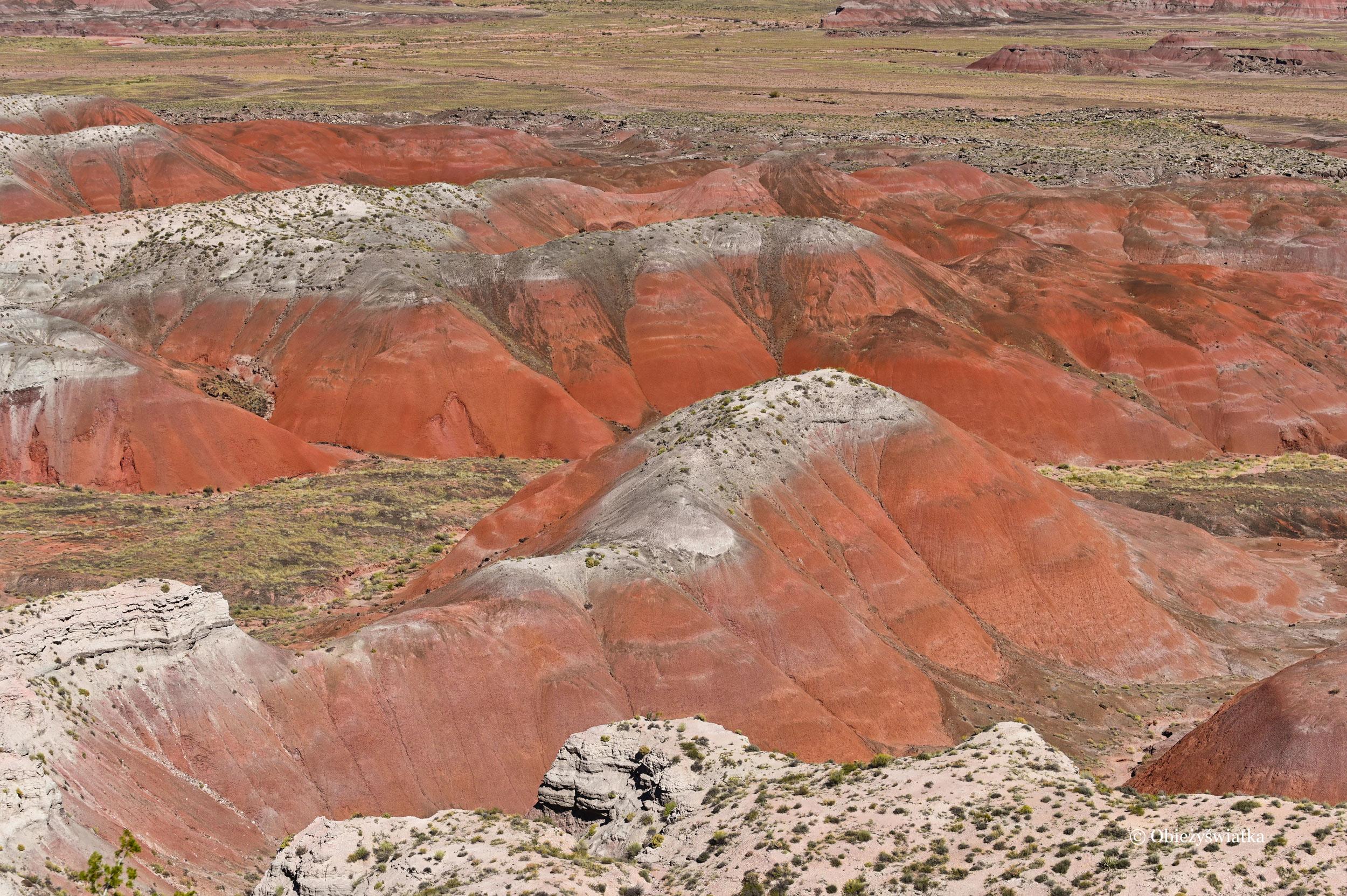 Pustynia Pstra - Painted Desert, Arizona