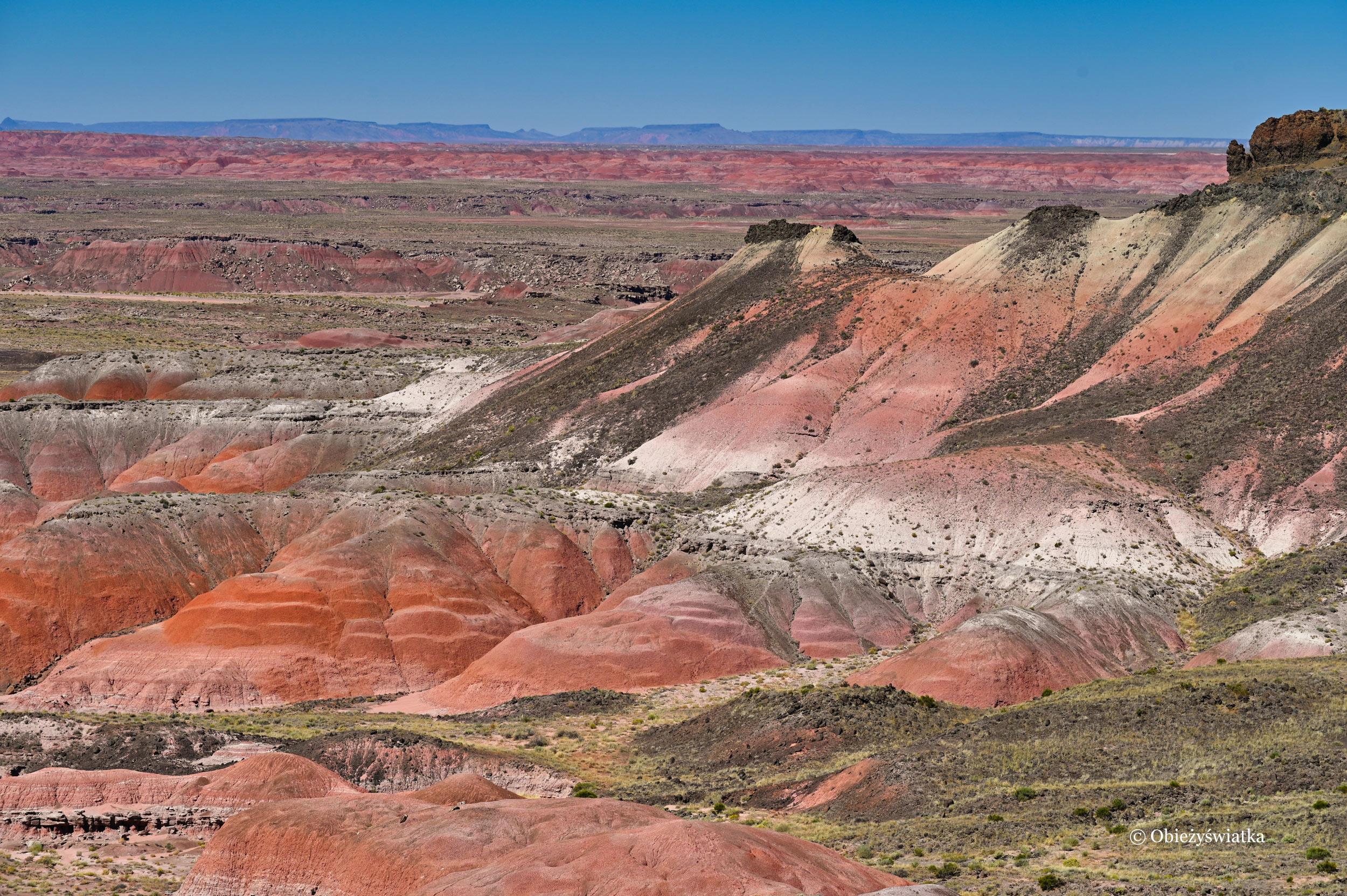 Wiele barw ziemi - Painted Desert, Arizona, USA
