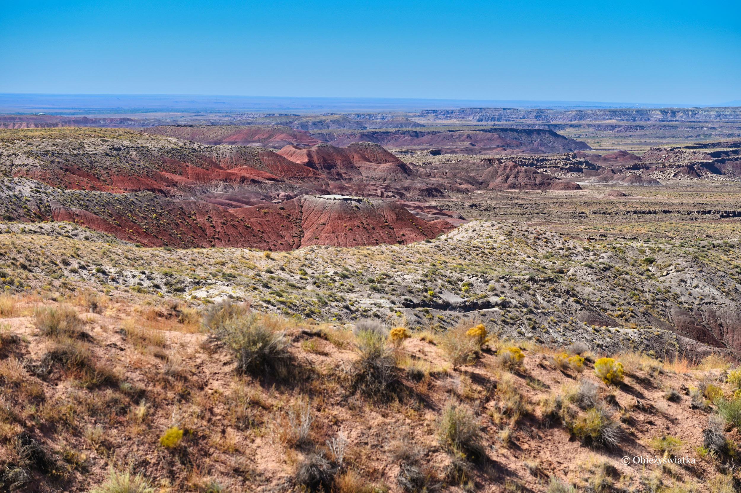Painted Desert, Arizona, USA